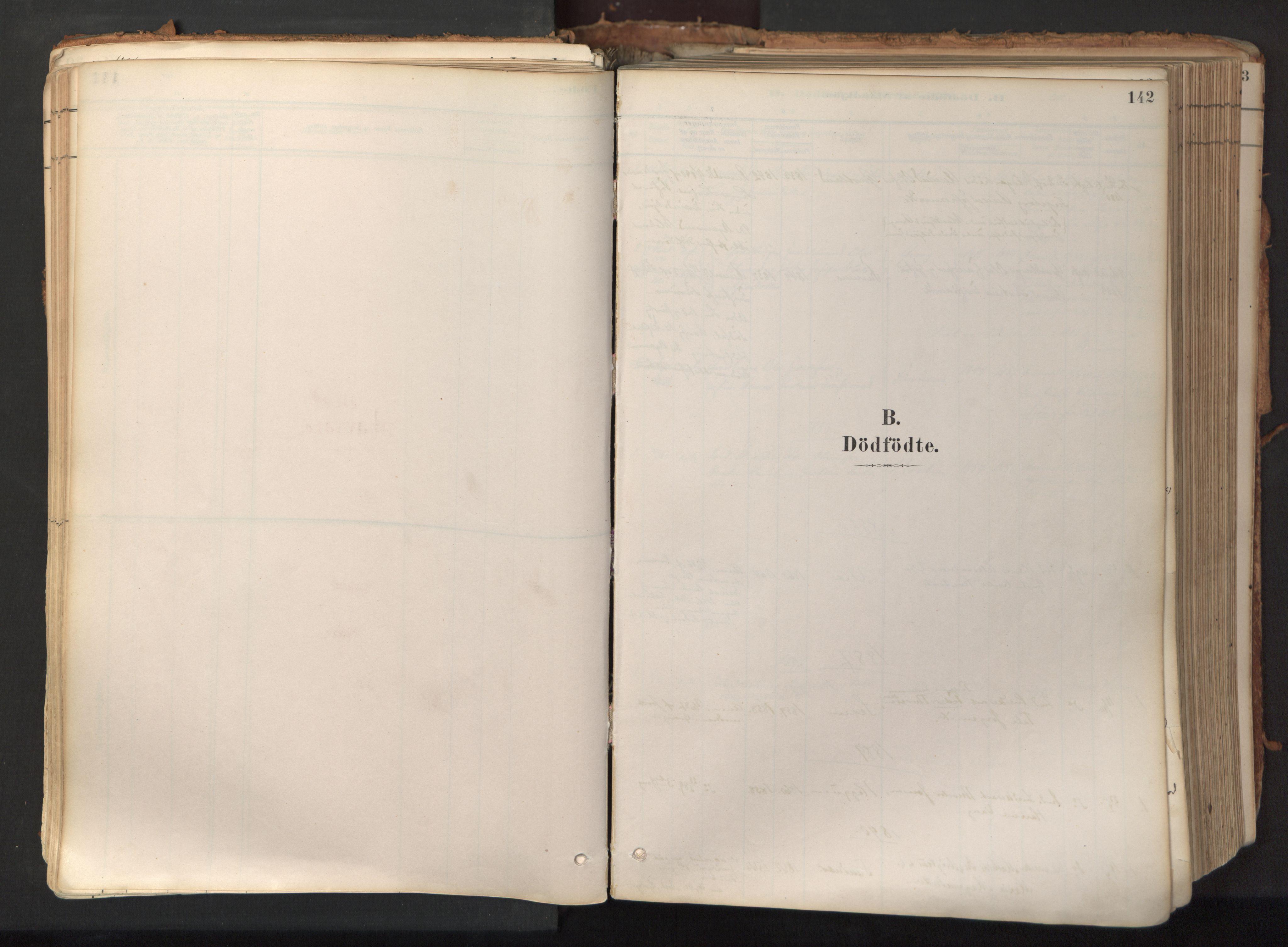 SAT, Ministerialprotokoller, klokkerbøker og fødselsregistre - Nord-Trøndelag, 758/L0519: Ministerialbok nr. 758A04, 1880-1926, s. 142