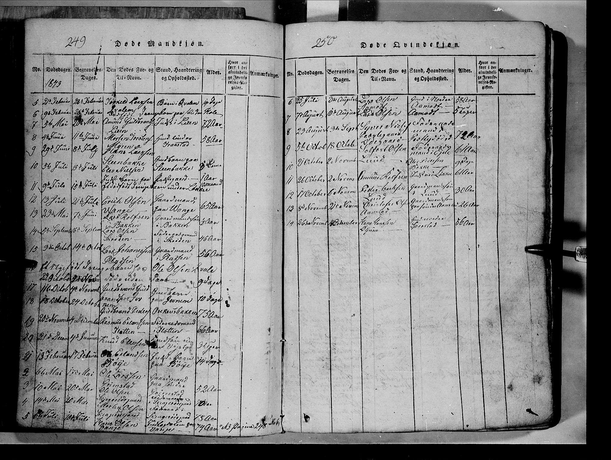 SAH, Lom prestekontor, L/L0003: Klokkerbok nr. 3, 1815-1844, s. 249-250