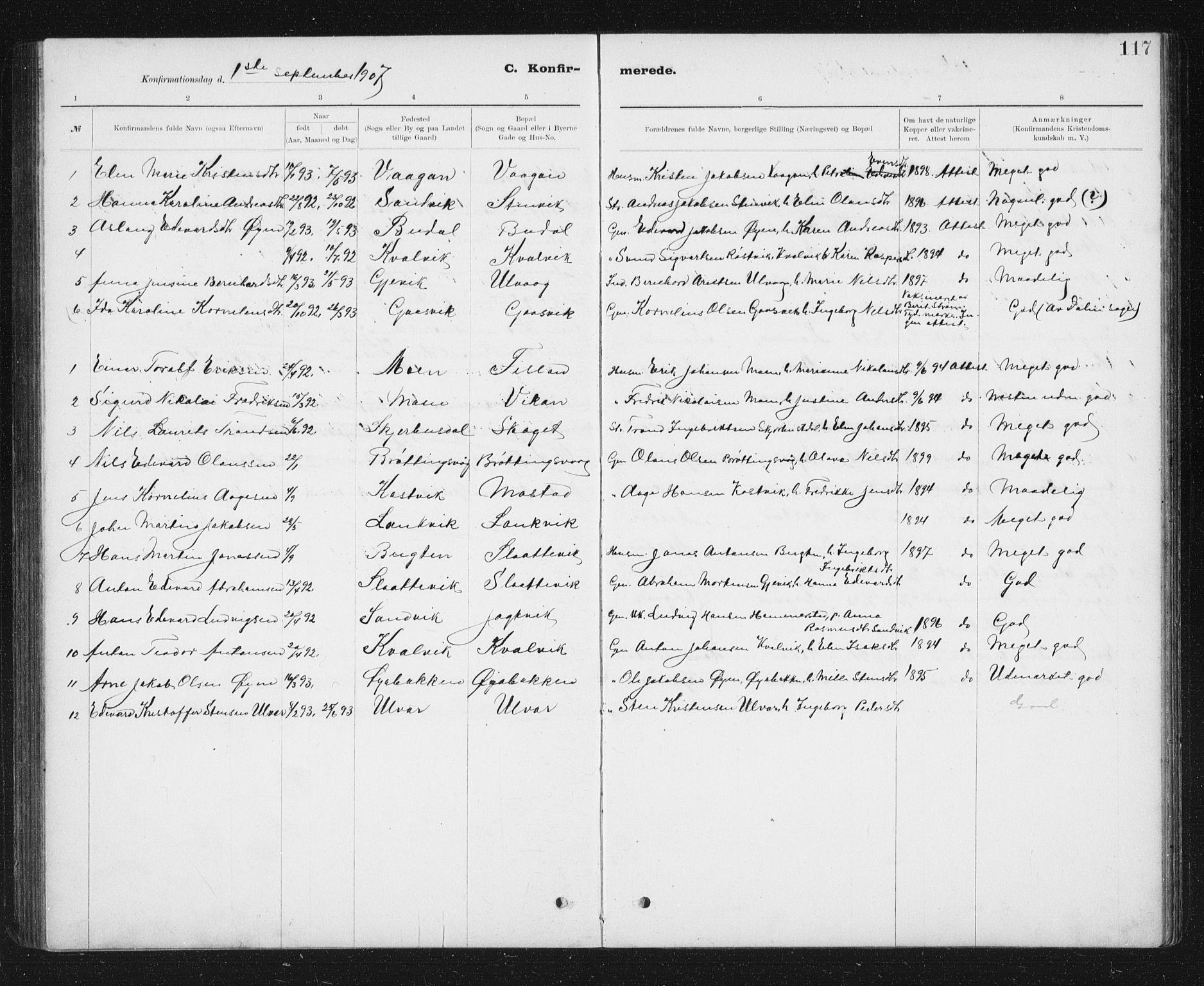 SAT, Ministerialprotokoller, klokkerbøker og fødselsregistre - Sør-Trøndelag, 637/L0563: Klokkerbok nr. 637C04, 1899-1940, s. 117