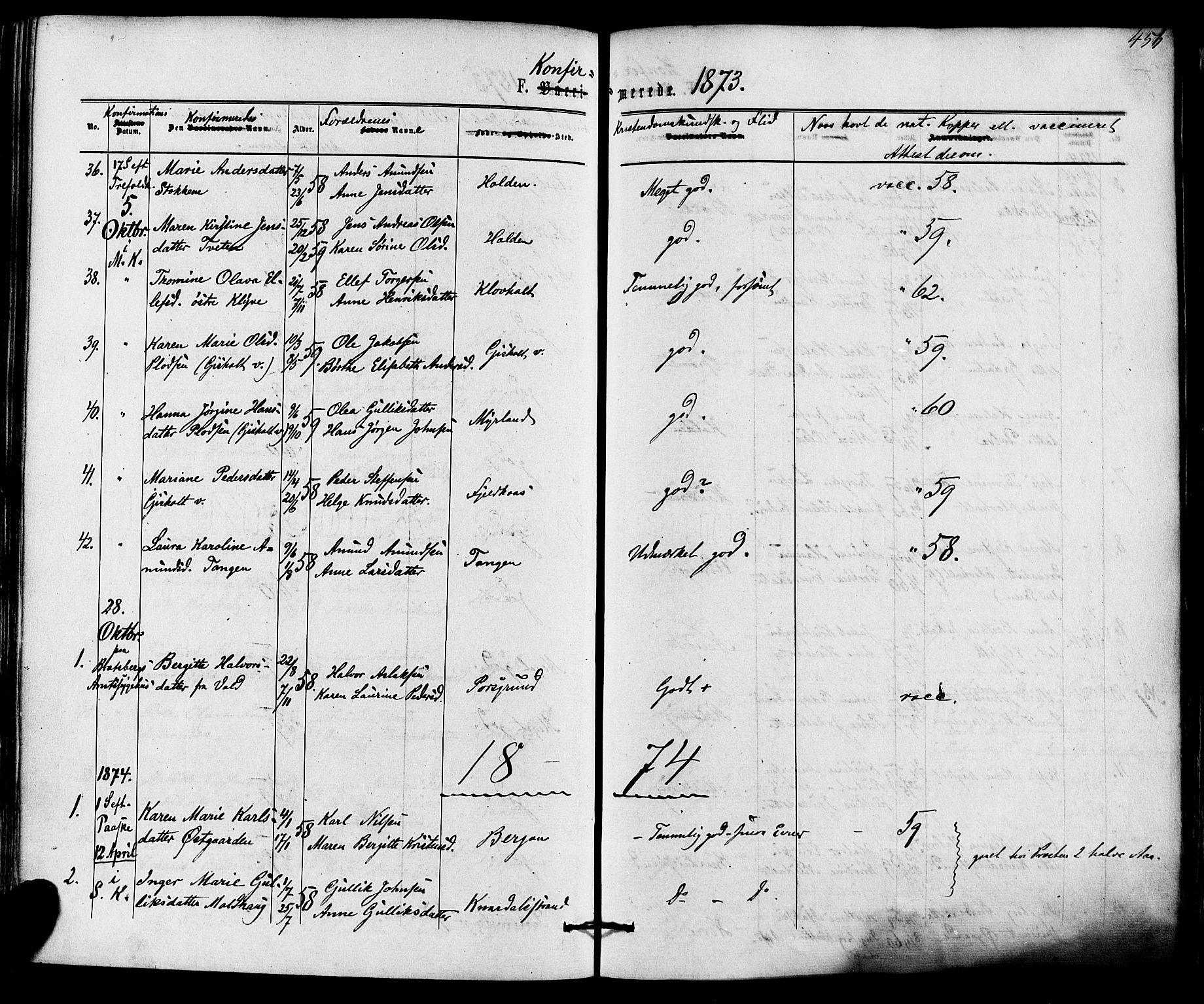 SAKO, Solum kirkebøker, F/Fa/L0008: Ministerialbok nr. I 8, 1865-1876, s. 456