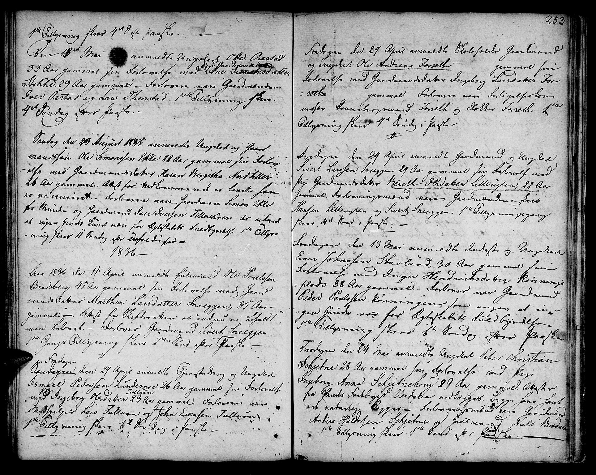 SAT, Ministerialprotokoller, klokkerbøker og fødselsregistre - Sør-Trøndelag, 618/L0438: Ministerialbok nr. 618A03, 1783-1815, s. 253