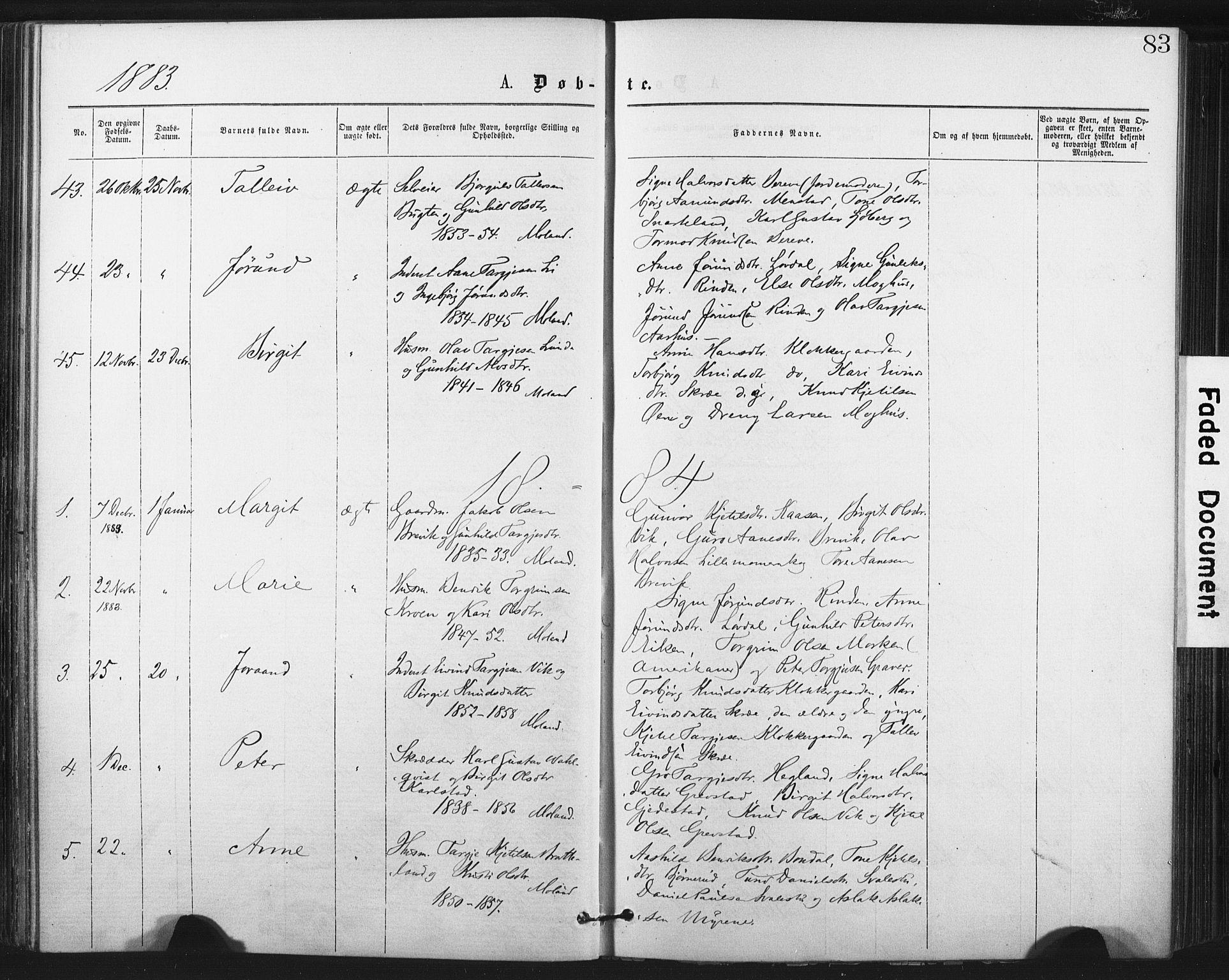 SAKO, Fyresdal kirkebøker, F/Fa/L0006: Ministerialbok nr. I 6, 1872-1886, s. 83
