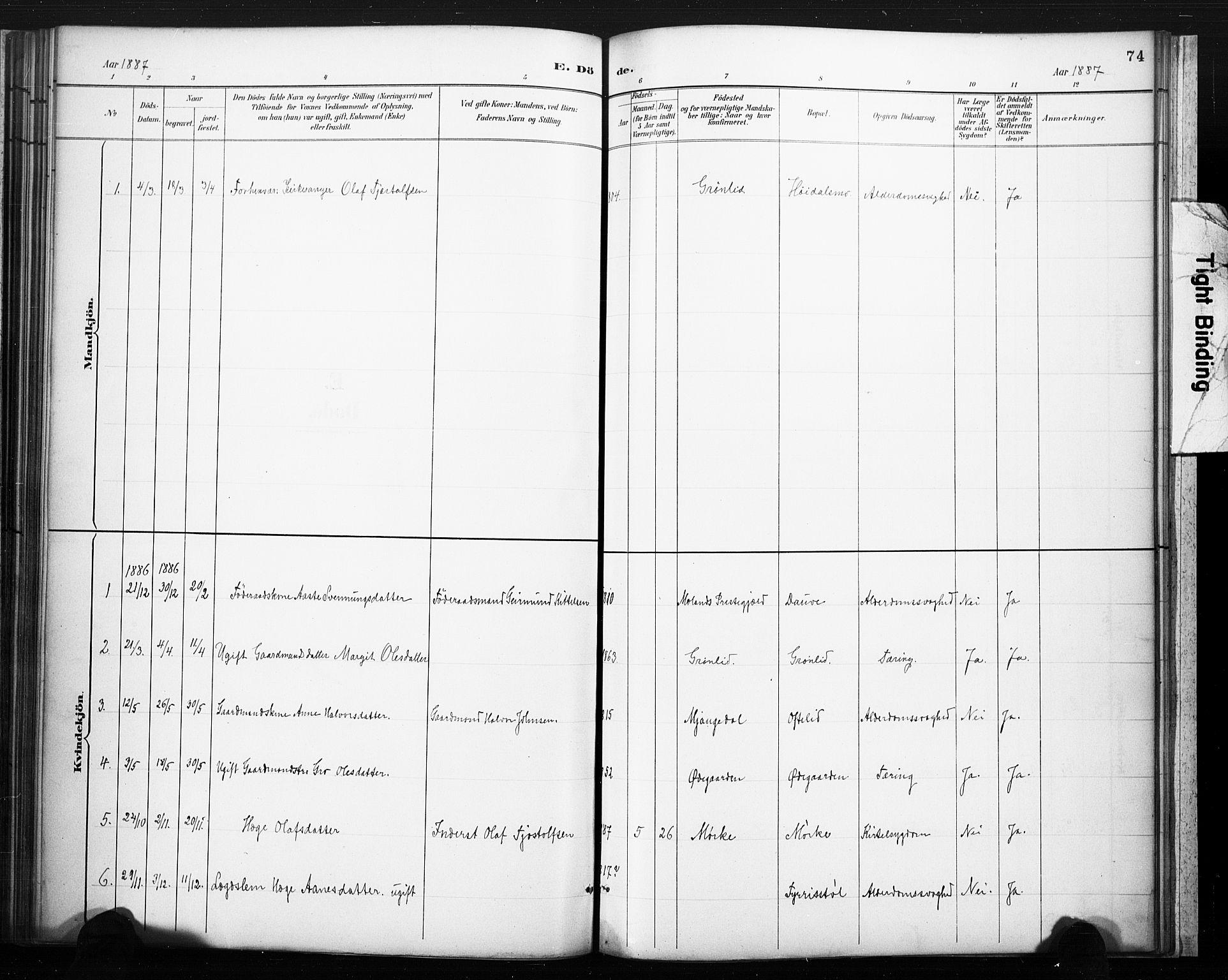 SAKO, Lårdal kirkebøker, F/Fc/L0002: Ministerialbok nr. III 2, 1887-1906, s. 74