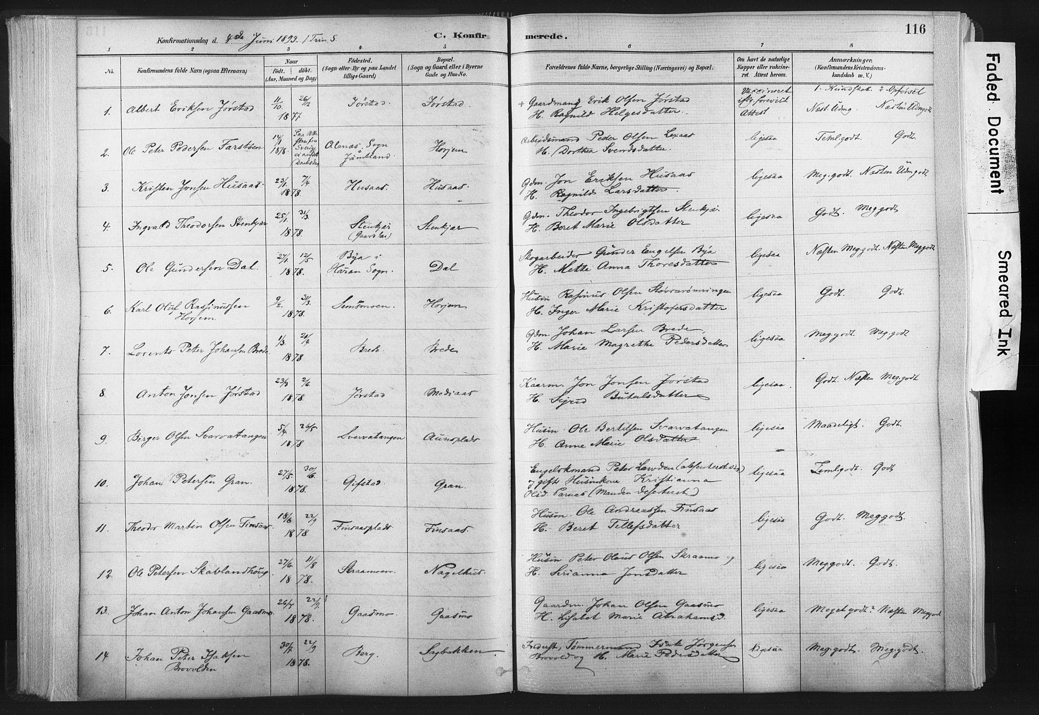SAT, Ministerialprotokoller, klokkerbøker og fødselsregistre - Nord-Trøndelag, 749/L0474: Ministerialbok nr. 749A08, 1887-1903, s. 116