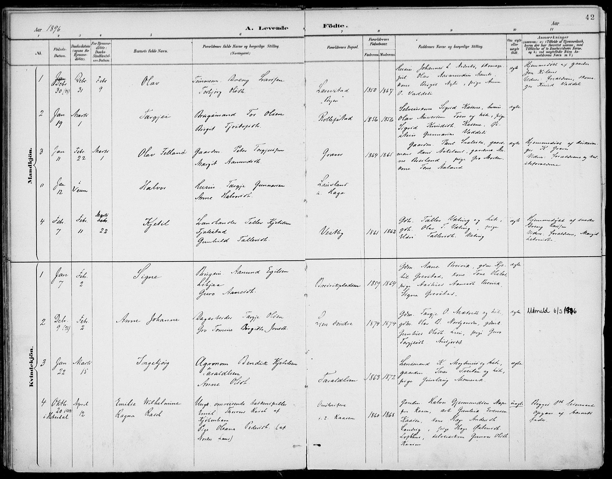 SAKO, Fyresdal kirkebøker, F/Fa/L0007: Ministerialbok nr. I 7, 1887-1914, s. 42