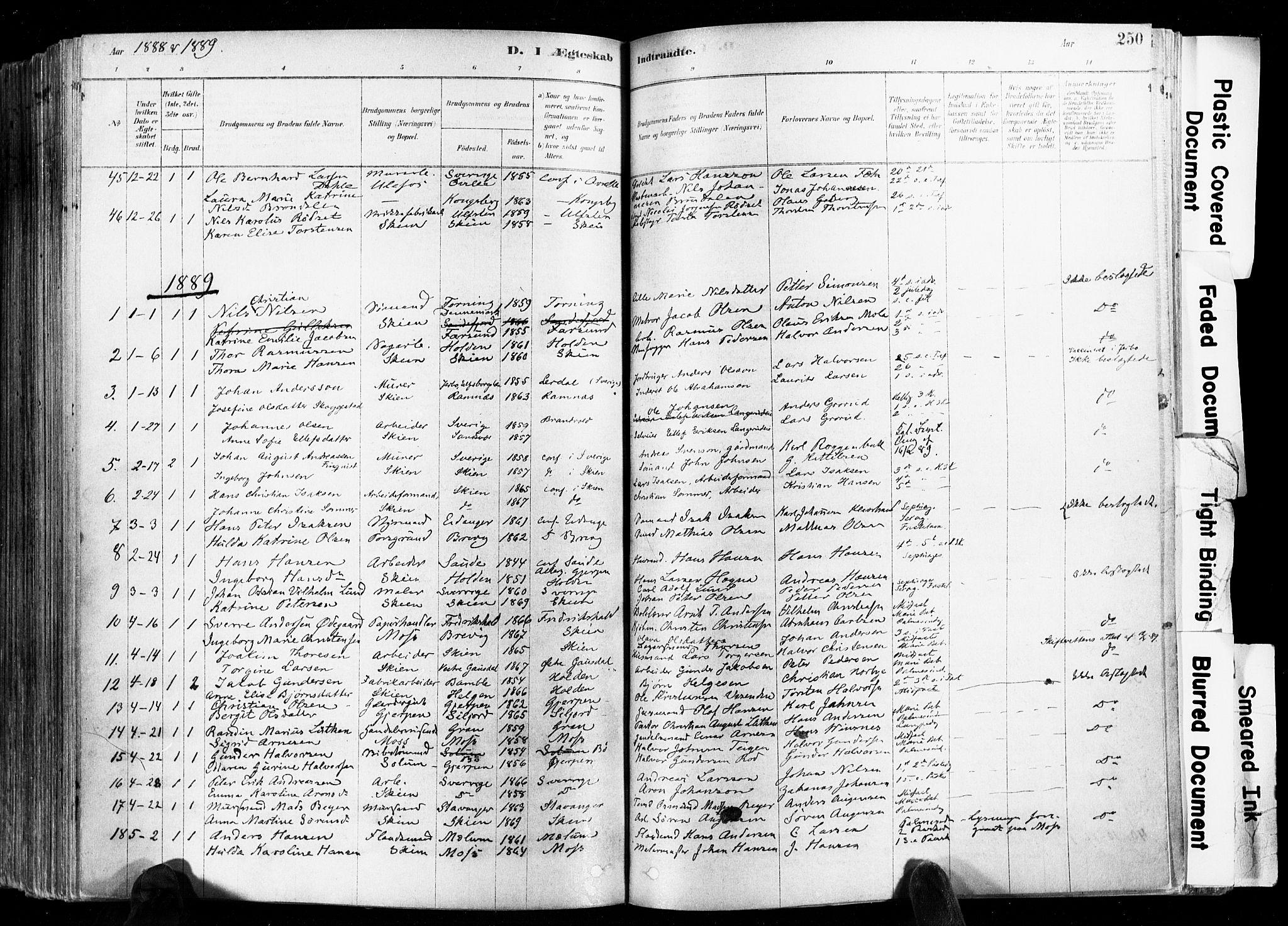 SAKO, Skien kirkebøker, F/Fa/L0009: Ministerialbok nr. 9, 1878-1890, s. 250