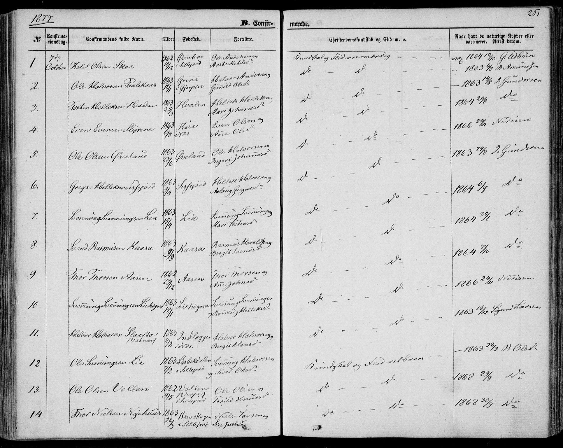 SAKO, Bø kirkebøker, F/Fa/L0009: Ministerialbok nr. 9, 1862-1879, s. 251