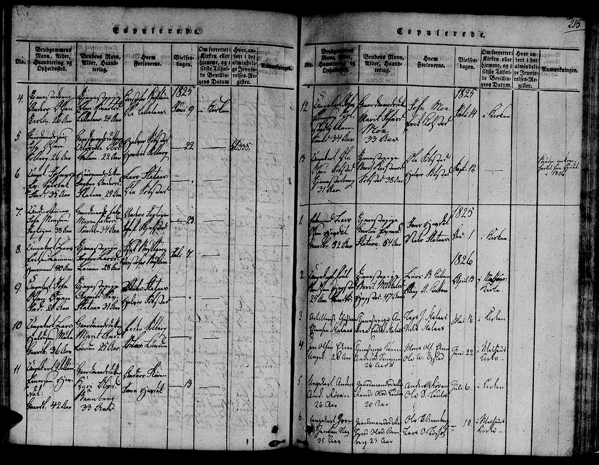 SAT, Ministerialprotokoller, klokkerbøker og fødselsregistre - Sør-Trøndelag, 691/L1067: Ministerialbok nr. 691A03 /3, 1816-1826, s. 215