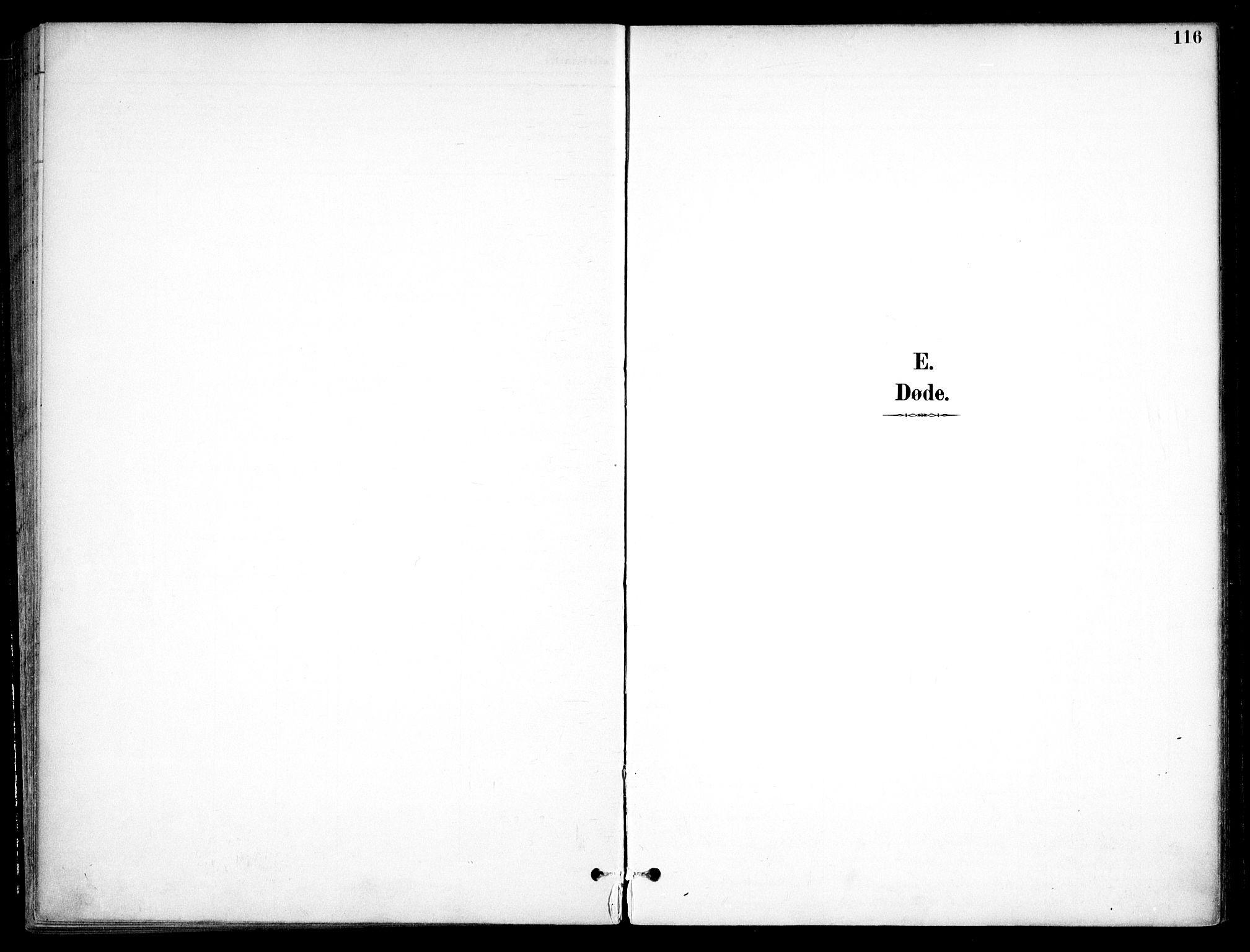 SAO, Nannestad prestekontor Kirkebøker, F/Fc/L0002: Ministerialbok nr. III 2, 1893-1907, s. 116