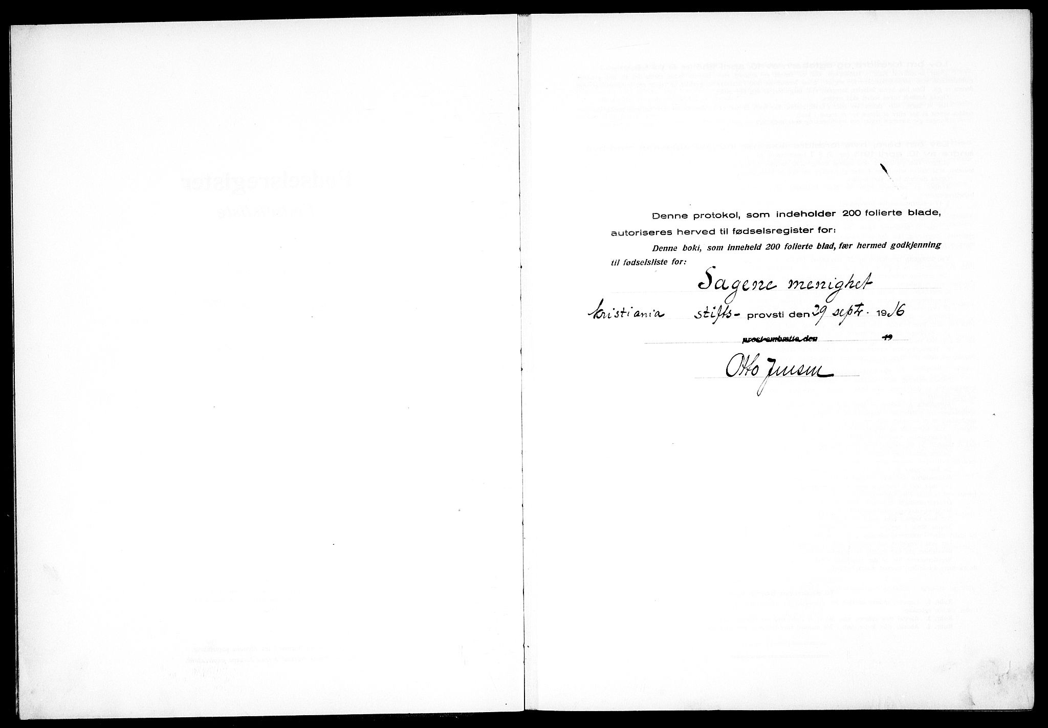 SAO, Sagene prestekontor Kirkebøker, J/L0001: Fødselsregister nr. 1, 1916-1920