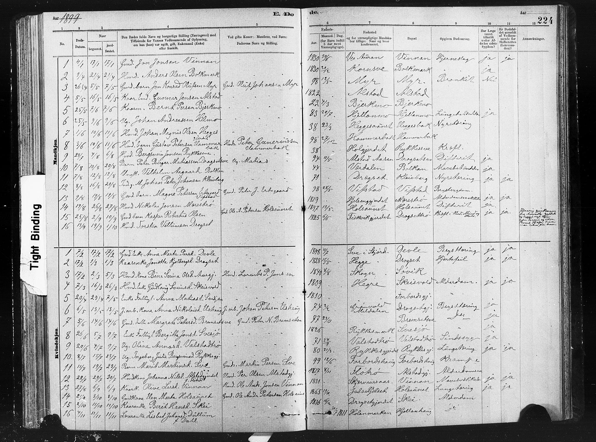 SAT, Ministerialprotokoller, klokkerbøker og fødselsregistre - Nord-Trøndelag, 712/L0103: Klokkerbok nr. 712C01, 1878-1917, s. 224