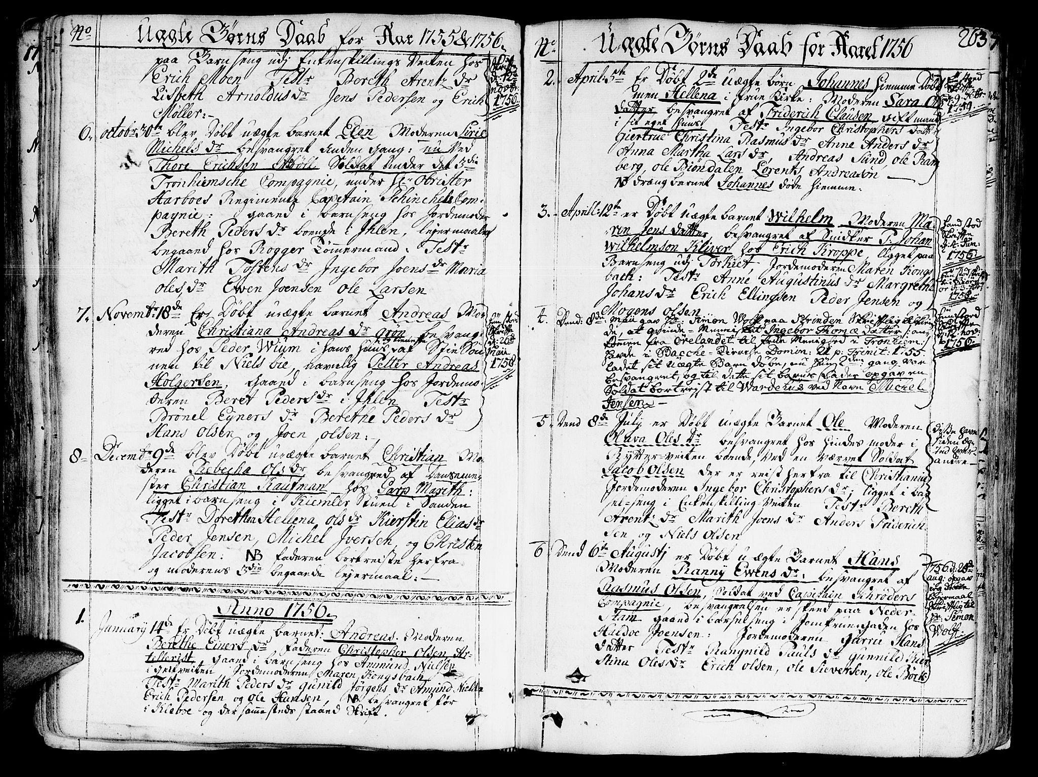 SAT, Ministerialprotokoller, klokkerbøker og fødselsregistre - Sør-Trøndelag, 602/L0103: Ministerialbok nr. 602A01, 1732-1774, s. 263