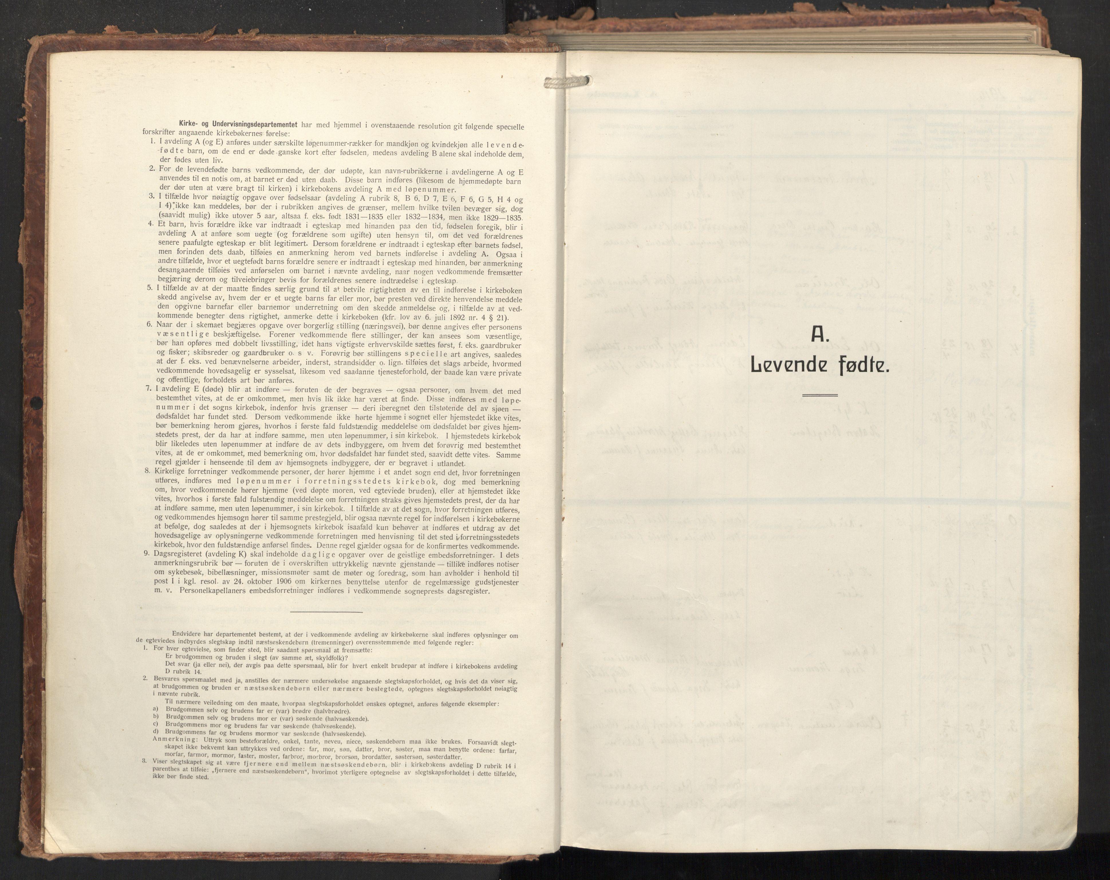 SAT, Ministerialprotokoller, klokkerbøker og fødselsregistre - Nordland, 874/L1064: Ministerialbok nr. 874A08, 1915-1926