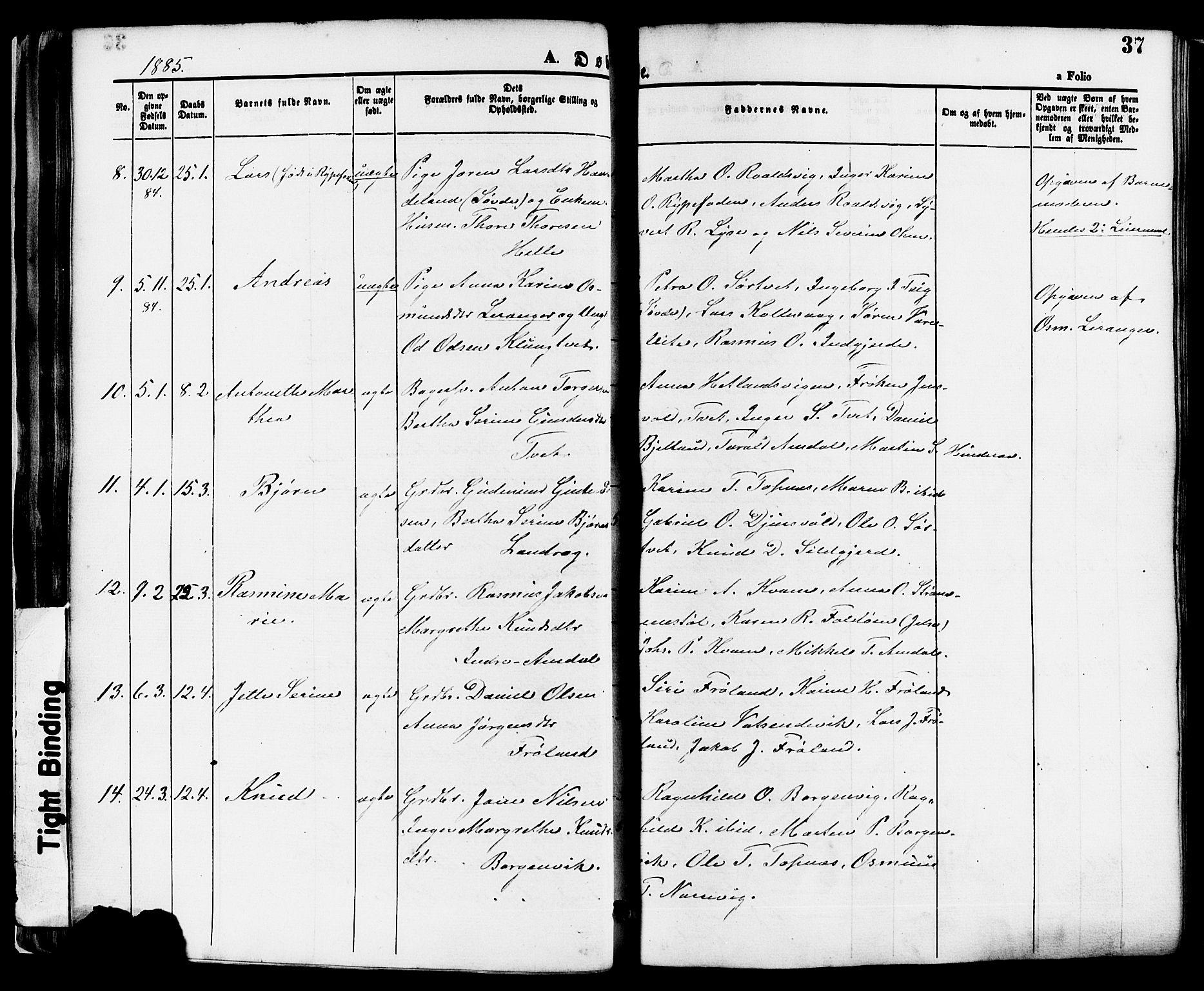 SAST, Nedstrand sokneprestkontor, IV: Ministerialbok nr. A 11, 1877-1887, s. 37