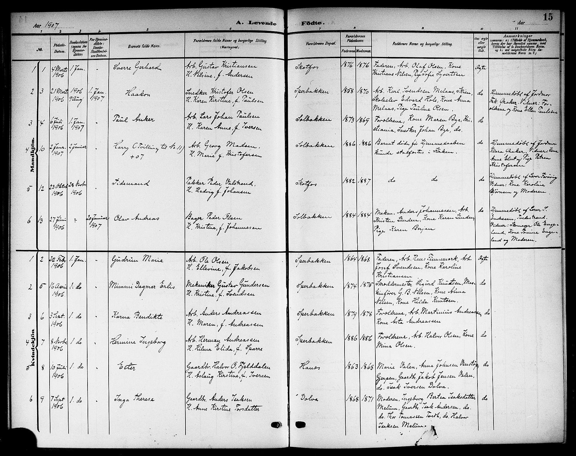 SAKO, Solum kirkebøker, G/Gb/L0005: Klokkerbok nr. II 5, 1905-1914, s. 15
