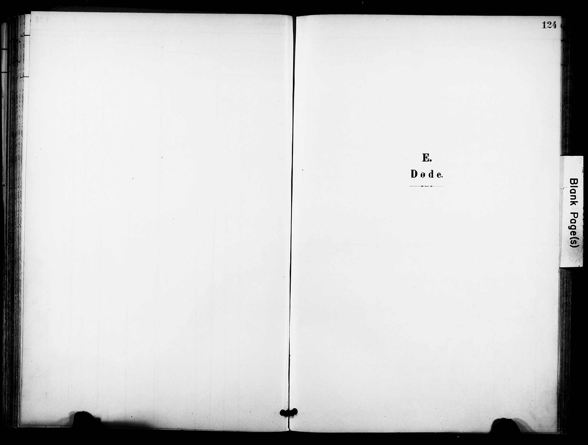 SAKO, Bø kirkebøker, F/Fa/L0012: Ministerialbok nr. 12, 1900-1908, s. 124