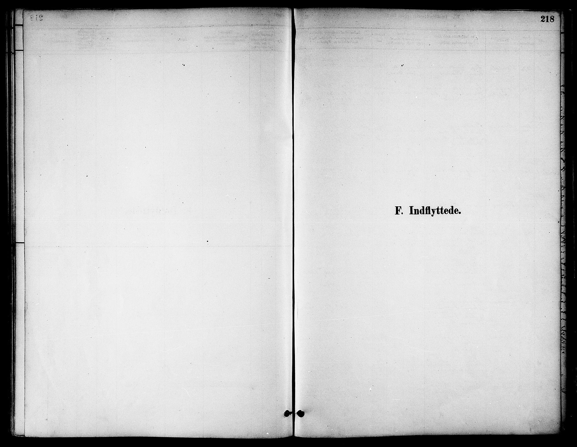 SAT, Ministerialprotokoller, klokkerbøker og fødselsregistre - Nord-Trøndelag, 739/L0371: Ministerialbok nr. 739A03, 1881-1895, s. 218