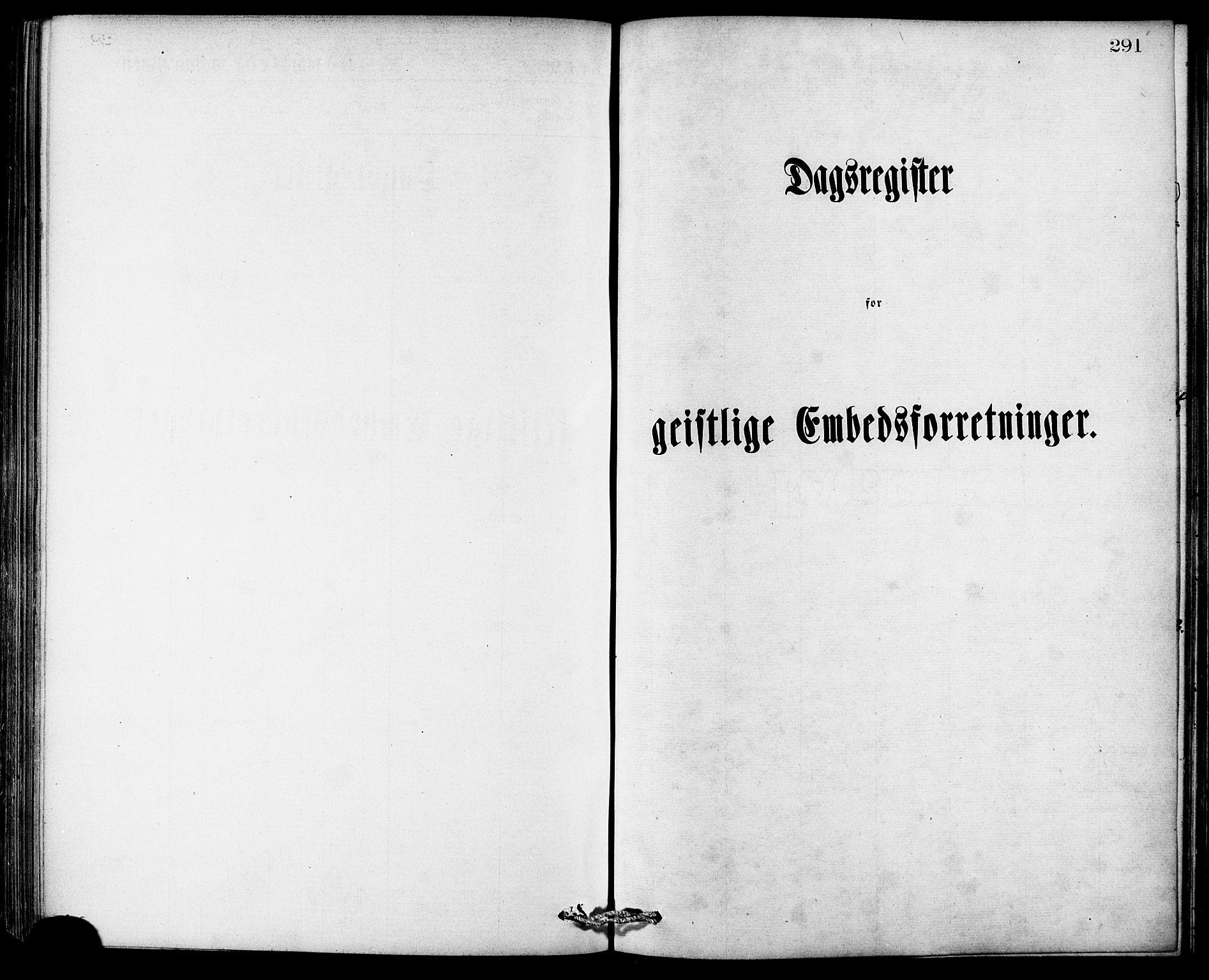 SAT, Ministerialprotokoller, klokkerbøker og fødselsregistre - Møre og Romsdal, 529/L0453: Ministerialbok nr. 529A03, 1872-1877, s. 291
