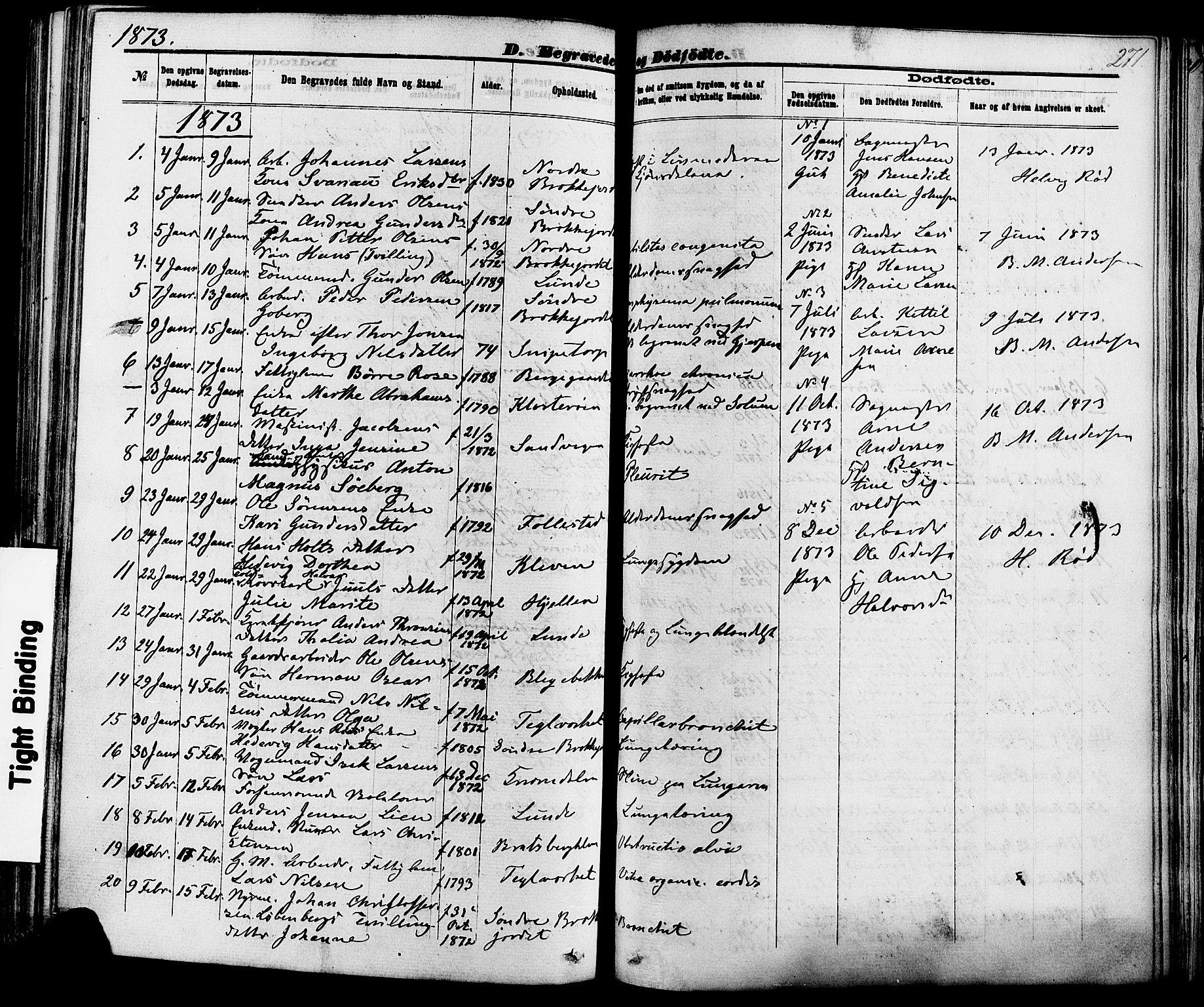 SAKO, Skien kirkebøker, F/Fa/L0008: Ministerialbok nr. 8, 1866-1877, s. 271