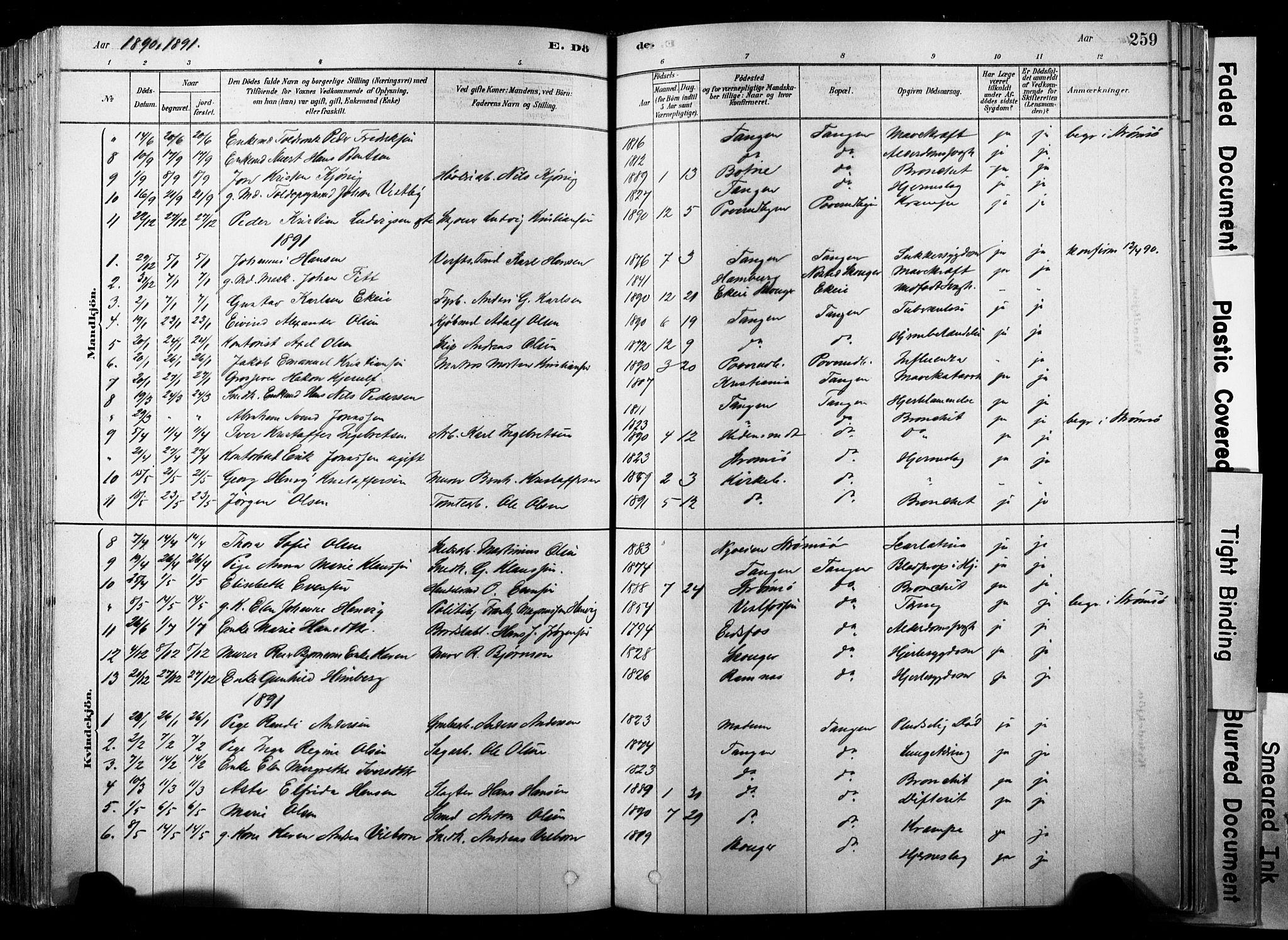 SAKO, Strømsø kirkebøker, F/Fb/L0006: Ministerialbok nr. II 6, 1879-1910, s. 259