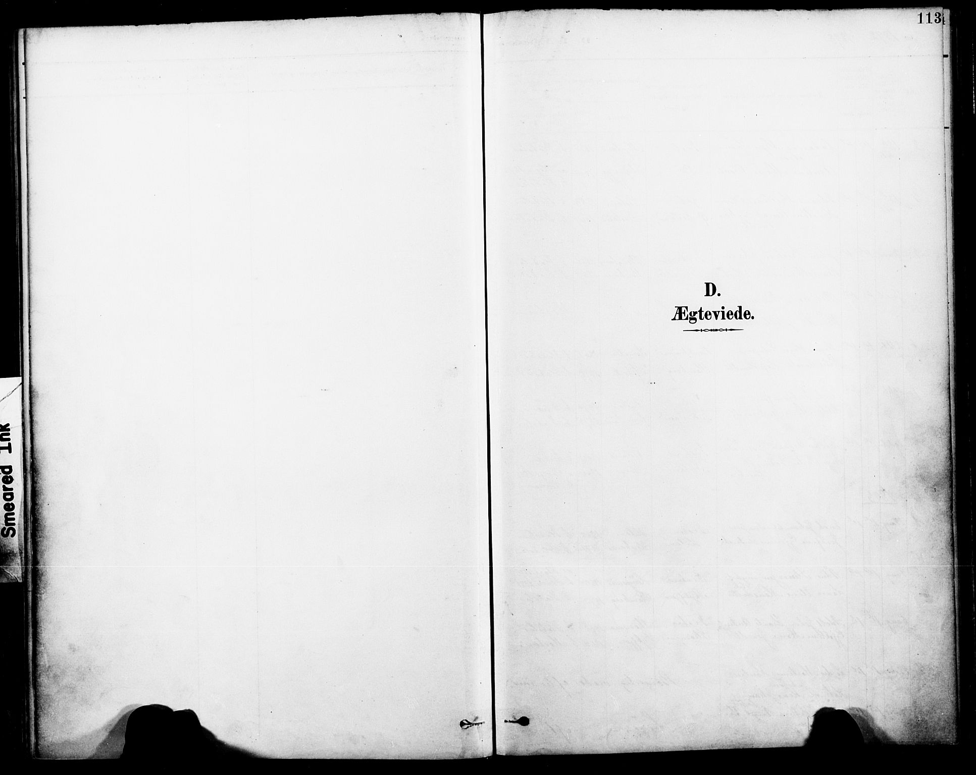 SAT, Ministerialprotokoller, klokkerbøker og fødselsregistre - Nordland, 885/L1205: Ministerialbok nr. 885A06, 1892-1905, s. 113