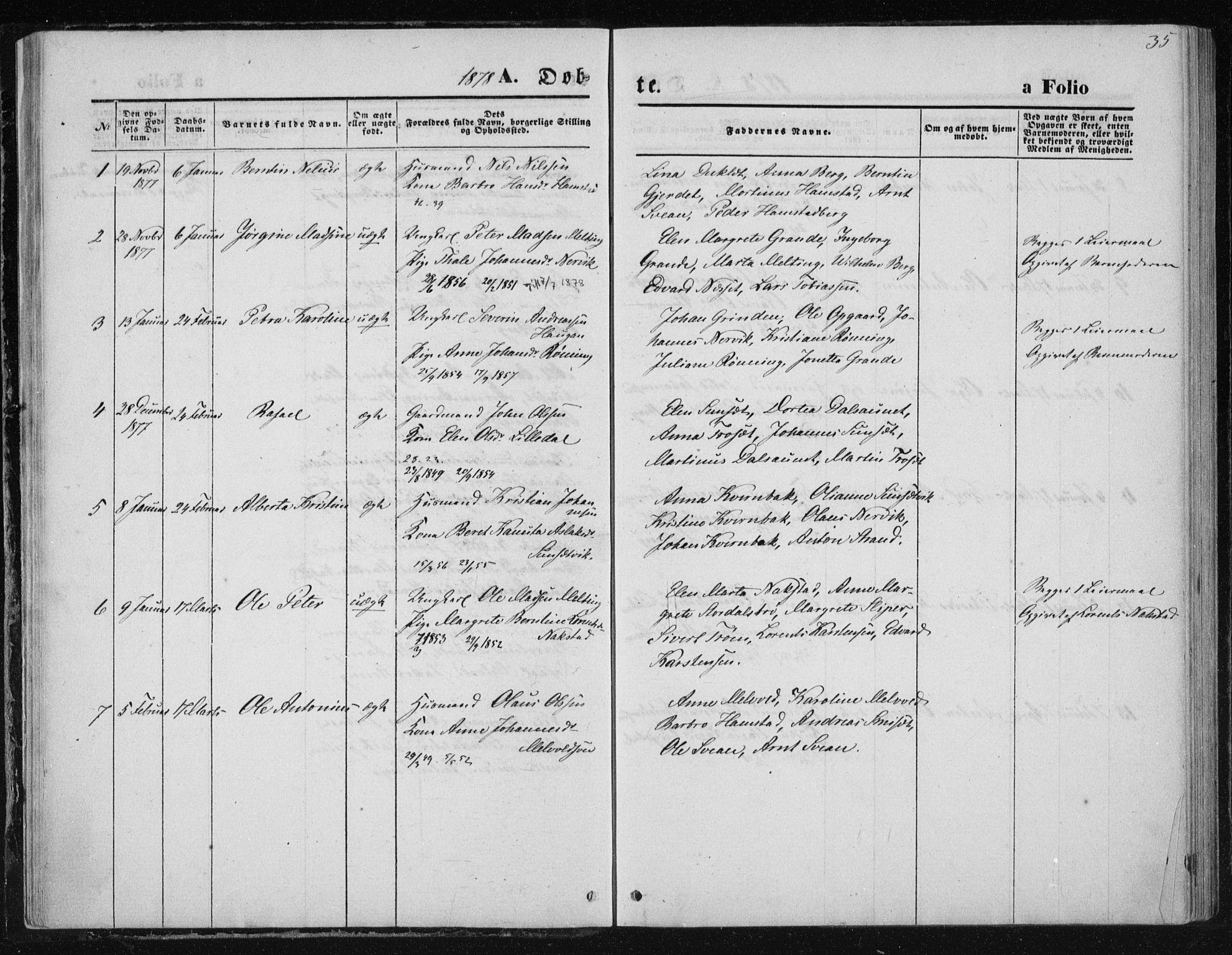 SAT, Ministerialprotokoller, klokkerbøker og fødselsregistre - Nord-Trøndelag, 733/L0324: Ministerialbok nr. 733A03, 1870-1883, s. 35
