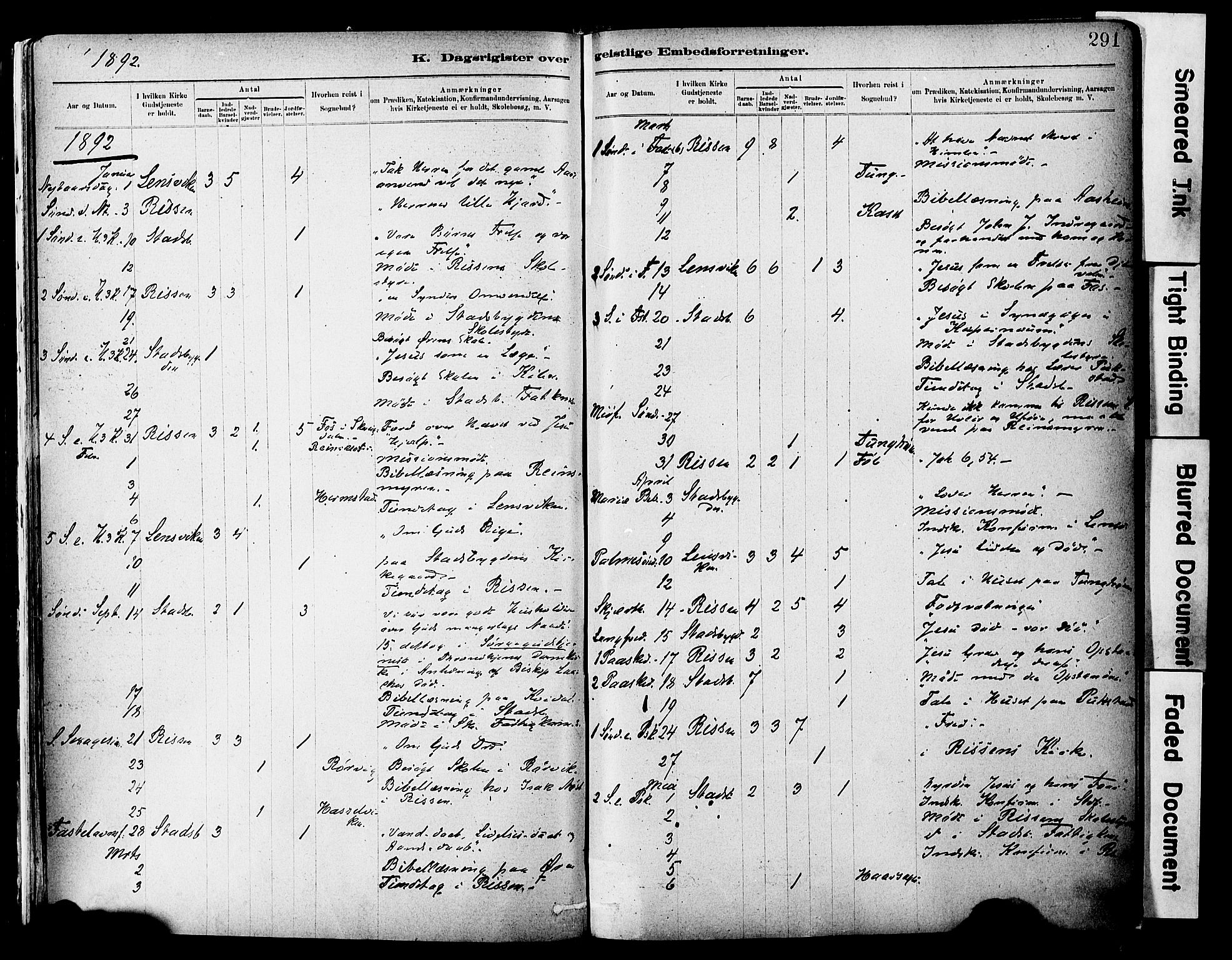 SAT, Ministerialprotokoller, klokkerbøker og fødselsregistre - Sør-Trøndelag, 646/L0615: Ministerialbok nr. 646A13, 1885-1900, s. 291