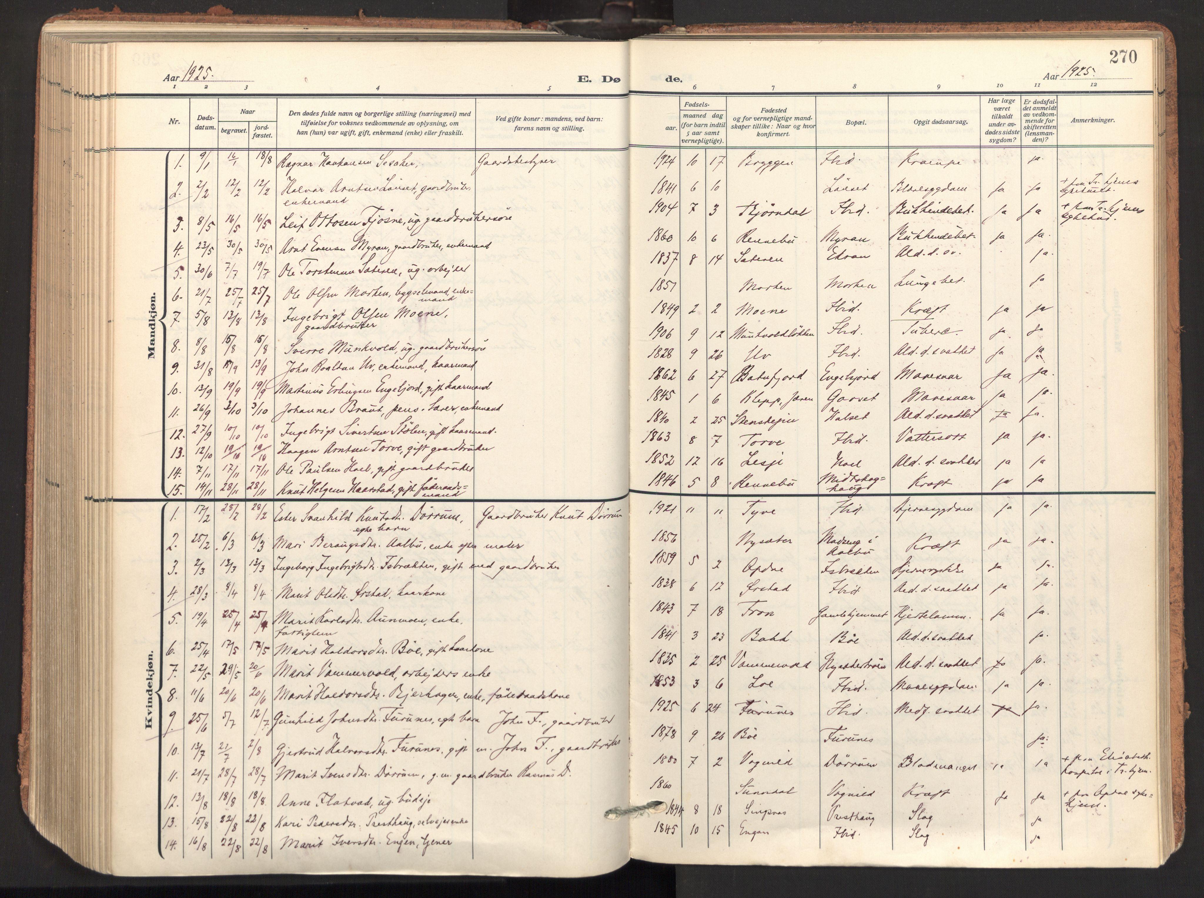 SAT, Ministerialprotokoller, klokkerbøker og fødselsregistre - Sør-Trøndelag, 678/L0909: Ministerialbok nr. 678A17, 1912-1930, s. 270