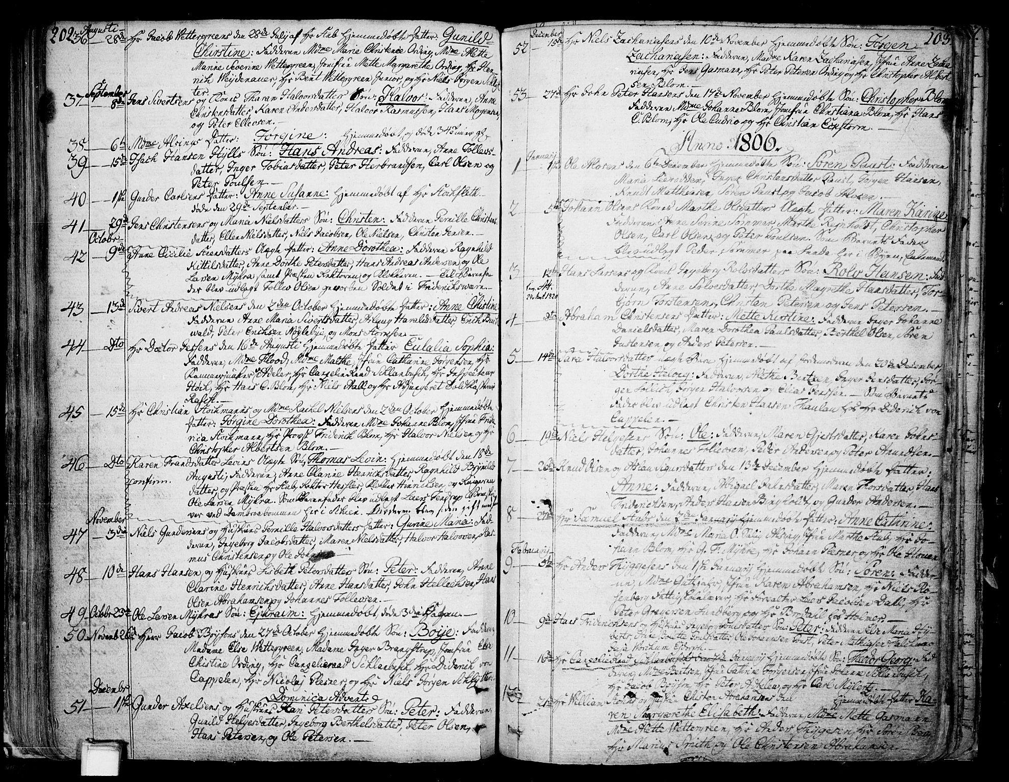 SAKO, Skien kirkebøker, F/Fa/L0004: Ministerialbok nr. 4, 1792-1814, s. 202-203