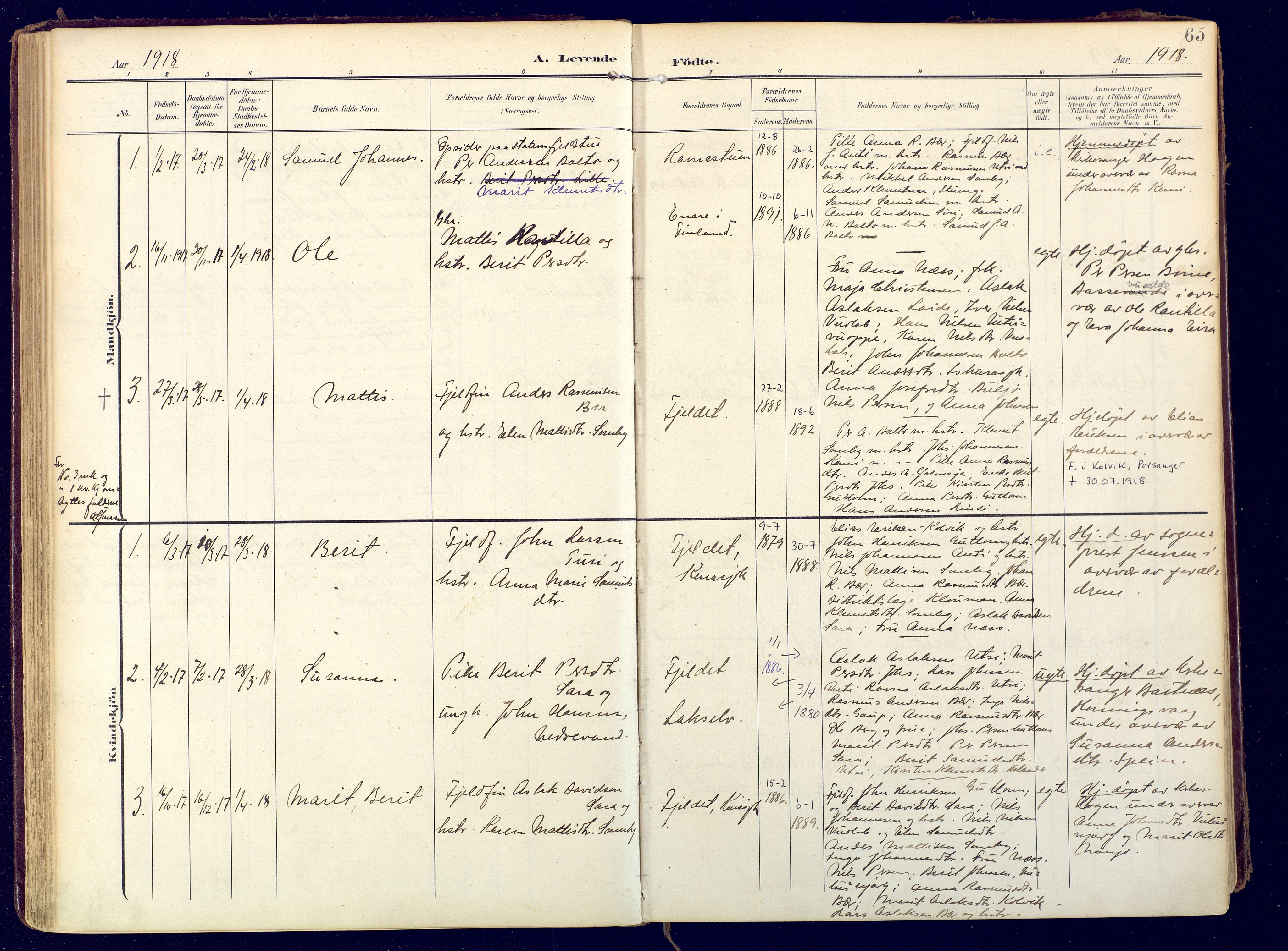 SATØ, Karasjok sokneprestkontor, H/Ha: Ministerialbok nr. 3, 1907-1926, s. 65