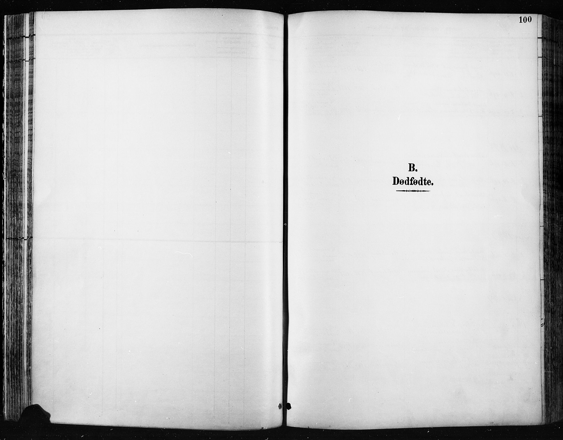 SAH, Jevnaker prestekontor, Ministerialbok nr. 9, 1891-1901, s. 100