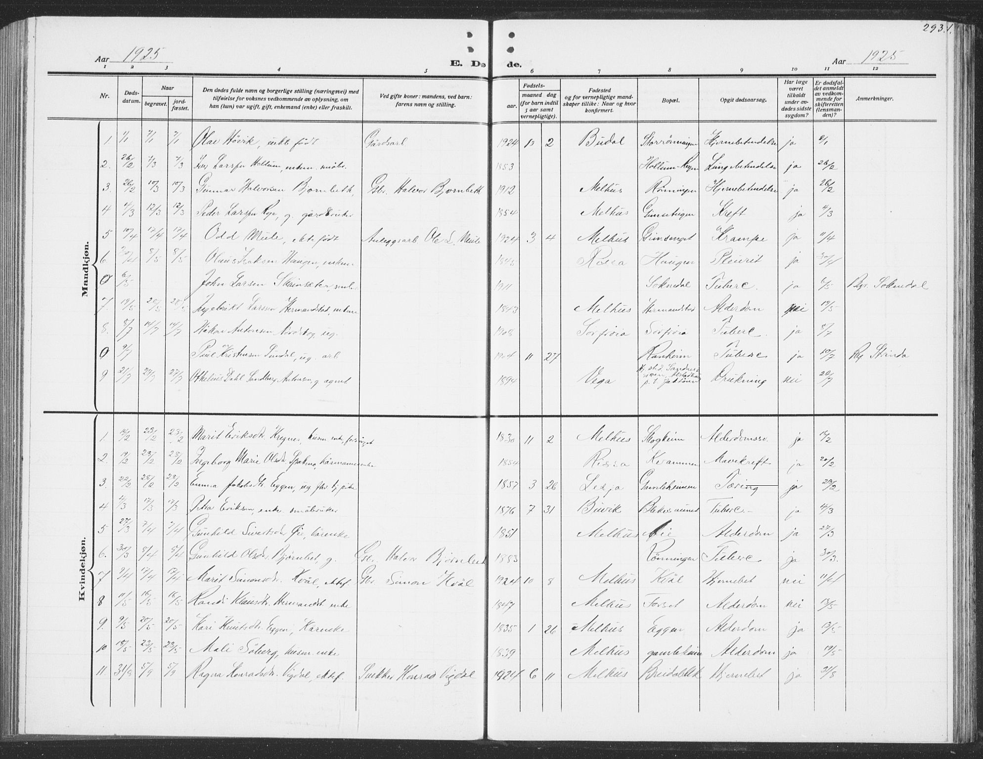 SAT, Ministerialprotokoller, klokkerbøker og fødselsregistre - Sør-Trøndelag, 691/L1095: Klokkerbok nr. 691C06, 1912-1933, s. 293