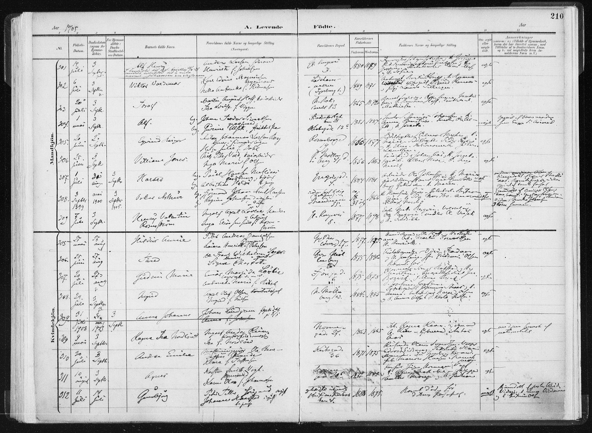 SAT, Ministerialprotokoller, klokkerbøker og fødselsregistre - Sør-Trøndelag, 604/L0199: Ministerialbok nr. 604A20I, 1901-1906, s. 210