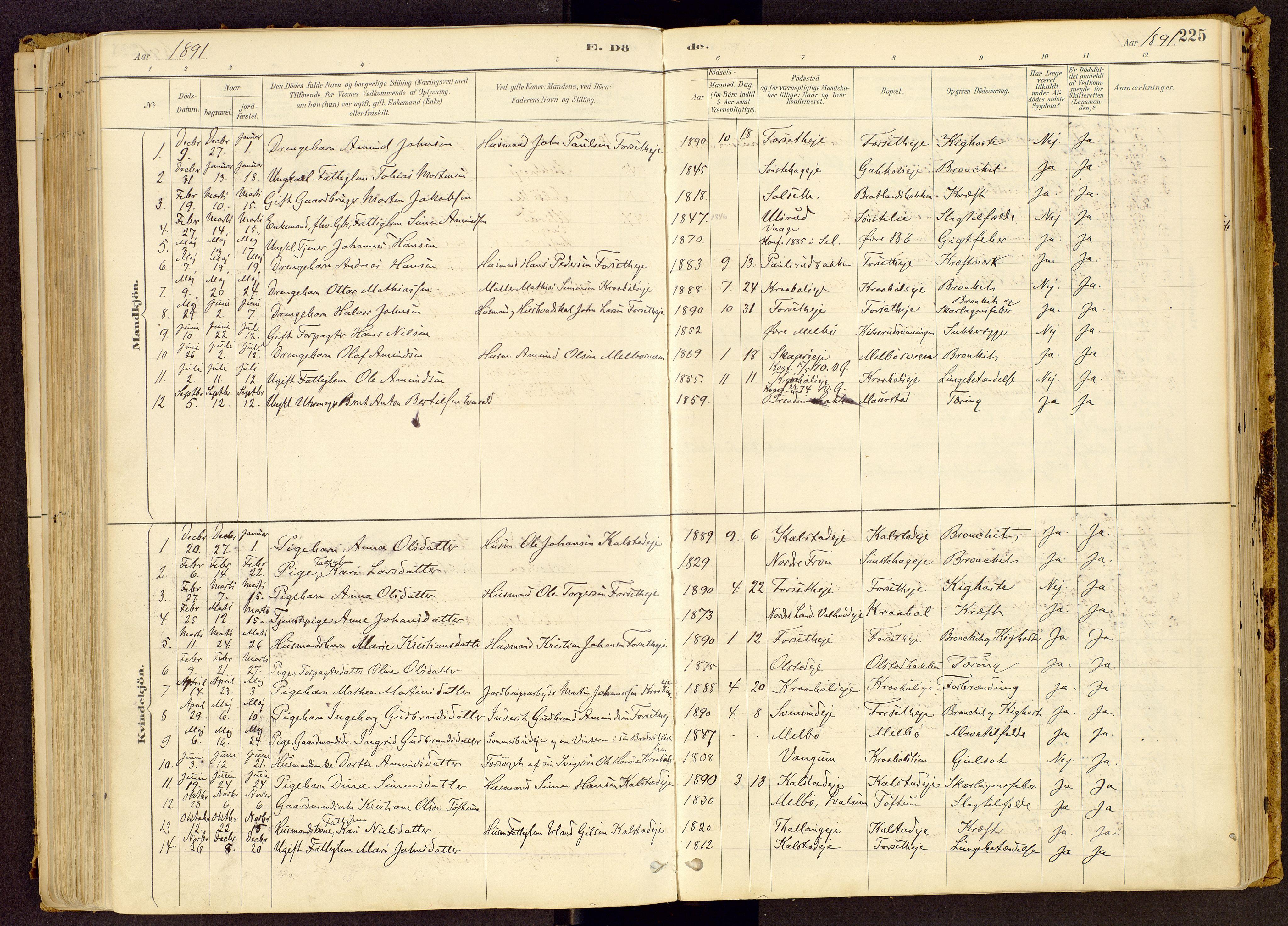 SAH, Vestre Gausdal prestekontor, Ministerialbok nr. 1, 1887-1914, s. 225