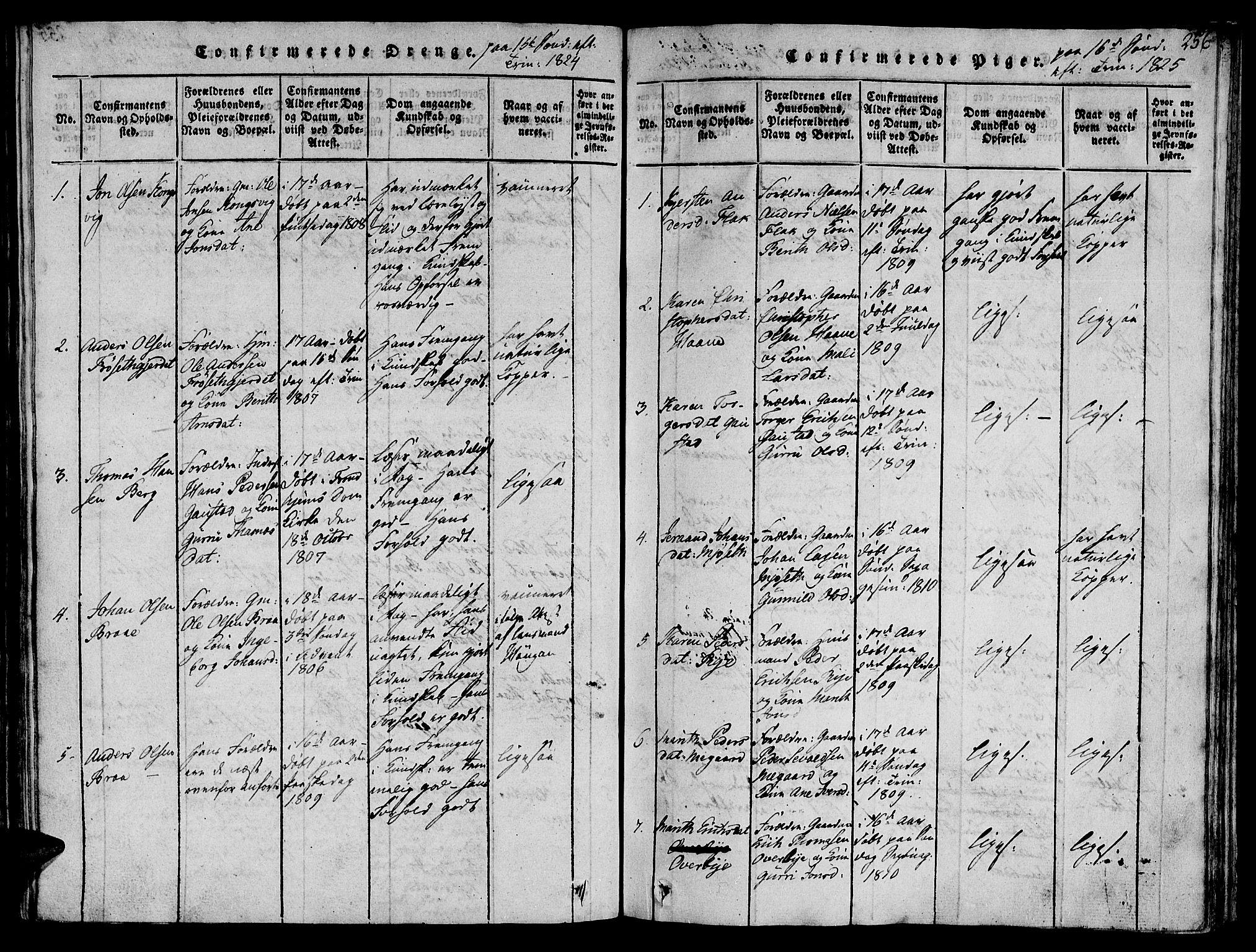 SAT, Ministerialprotokoller, klokkerbøker og fødselsregistre - Sør-Trøndelag, 612/L0372: Ministerialbok nr. 612A06 /1, 1816-1828, s. 256