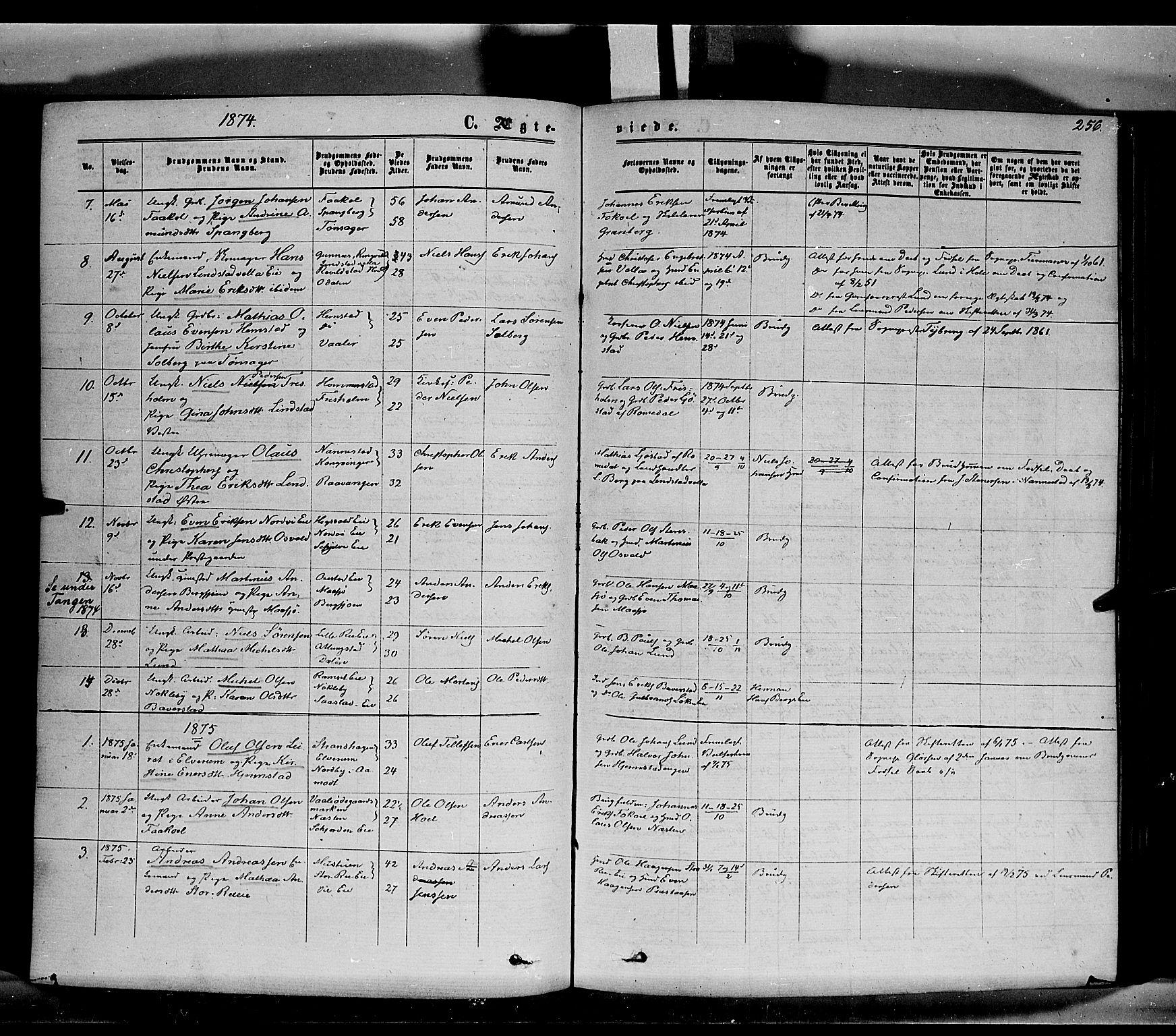 SAH, Stange prestekontor, K/L0013: Ministerialbok nr. 13, 1862-1879, s. 256