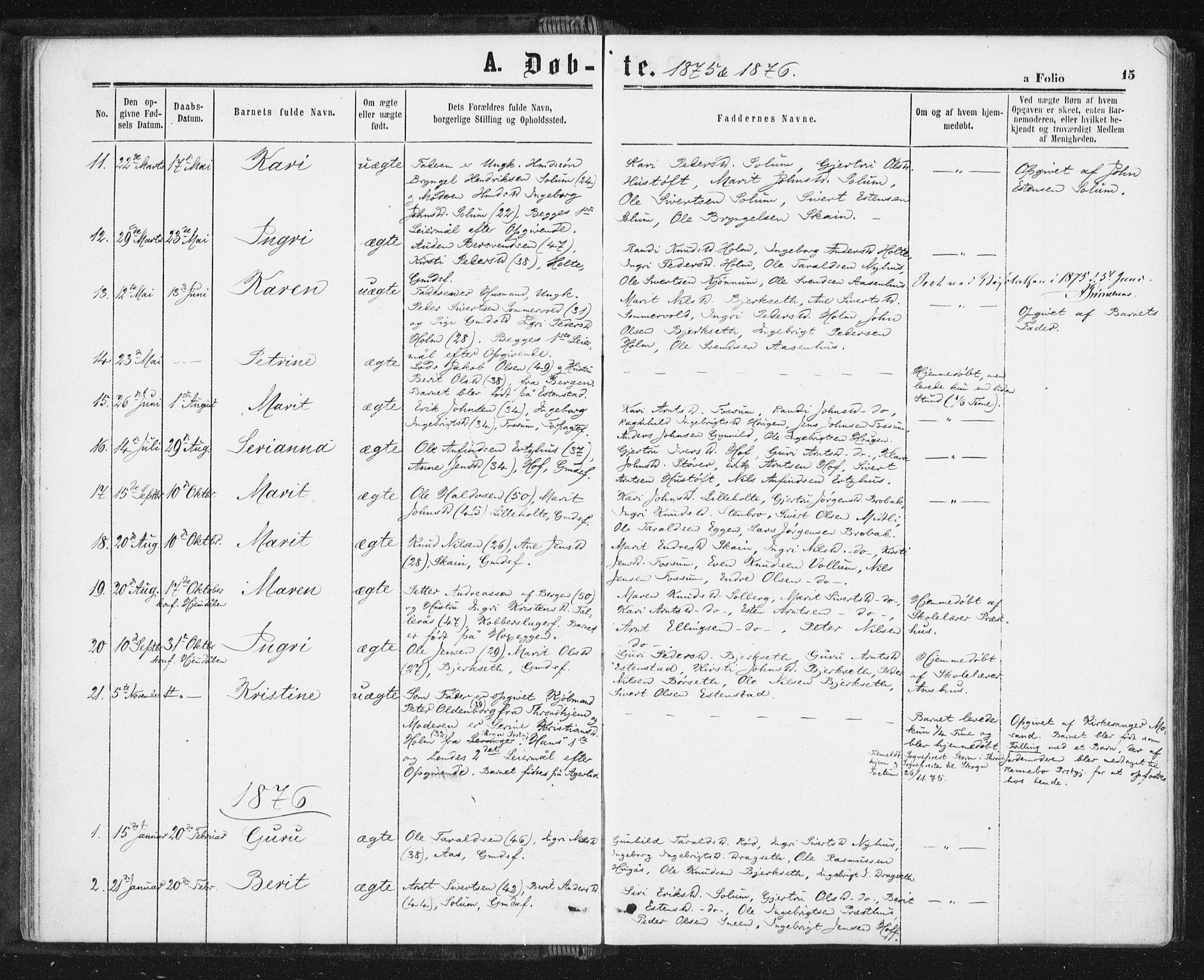 SAT, Ministerialprotokoller, klokkerbøker og fødselsregistre - Sør-Trøndelag, 689/L1039: Ministerialbok nr. 689A04, 1865-1878, s. 15