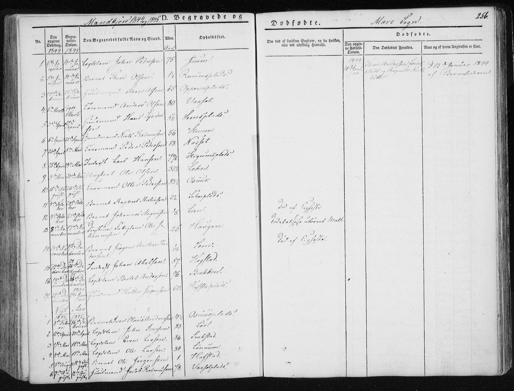 SAT, Ministerialprotokoller, klokkerbøker og fødselsregistre - Nord-Trøndelag, 735/L0339: Ministerialbok nr. 735A06 /1, 1836-1848, s. 256