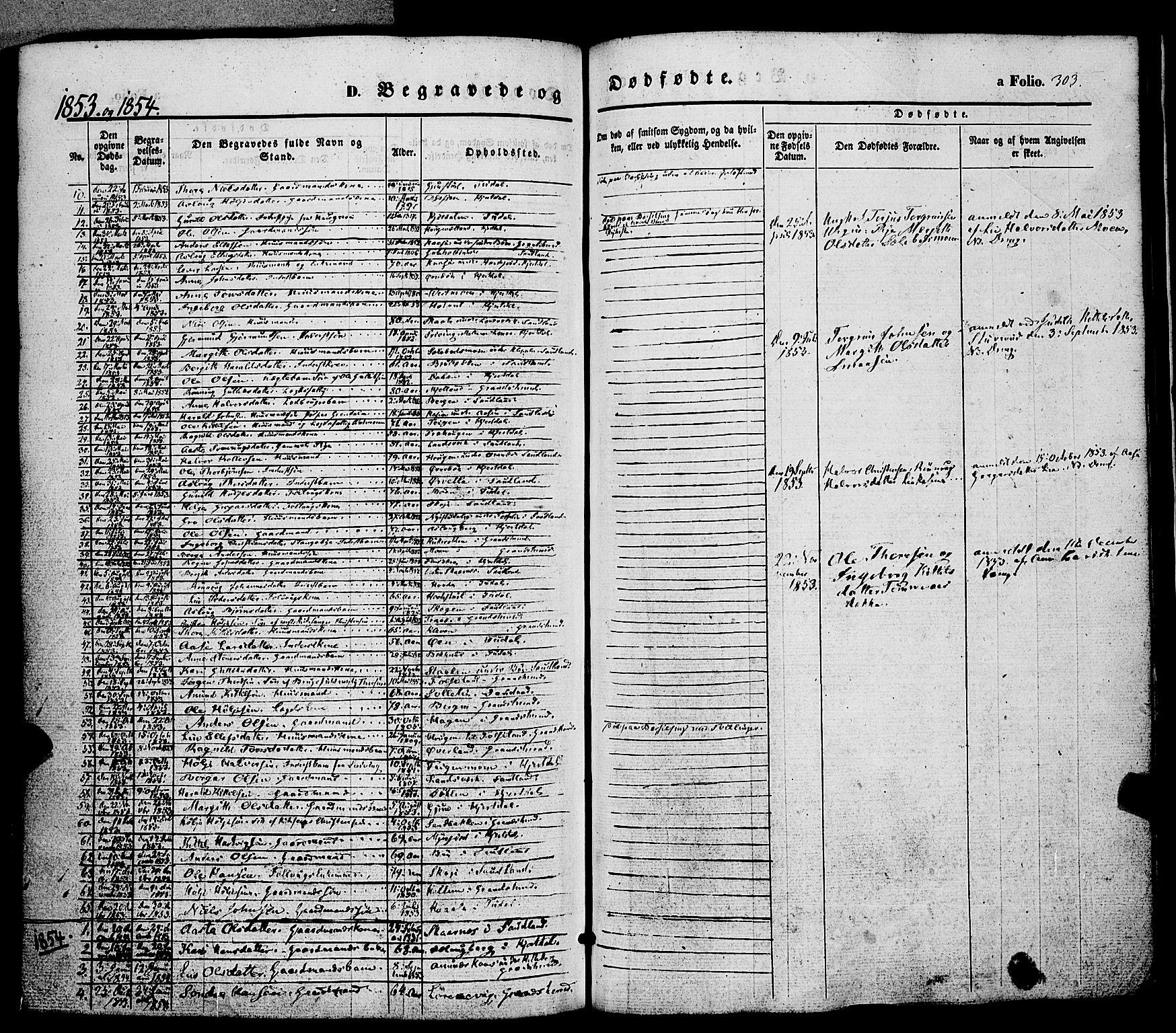 SAKO, Hjartdal kirkebøker, F/Fa/L0008: Ministerialbok nr. I 8, 1844-1859, s. 303