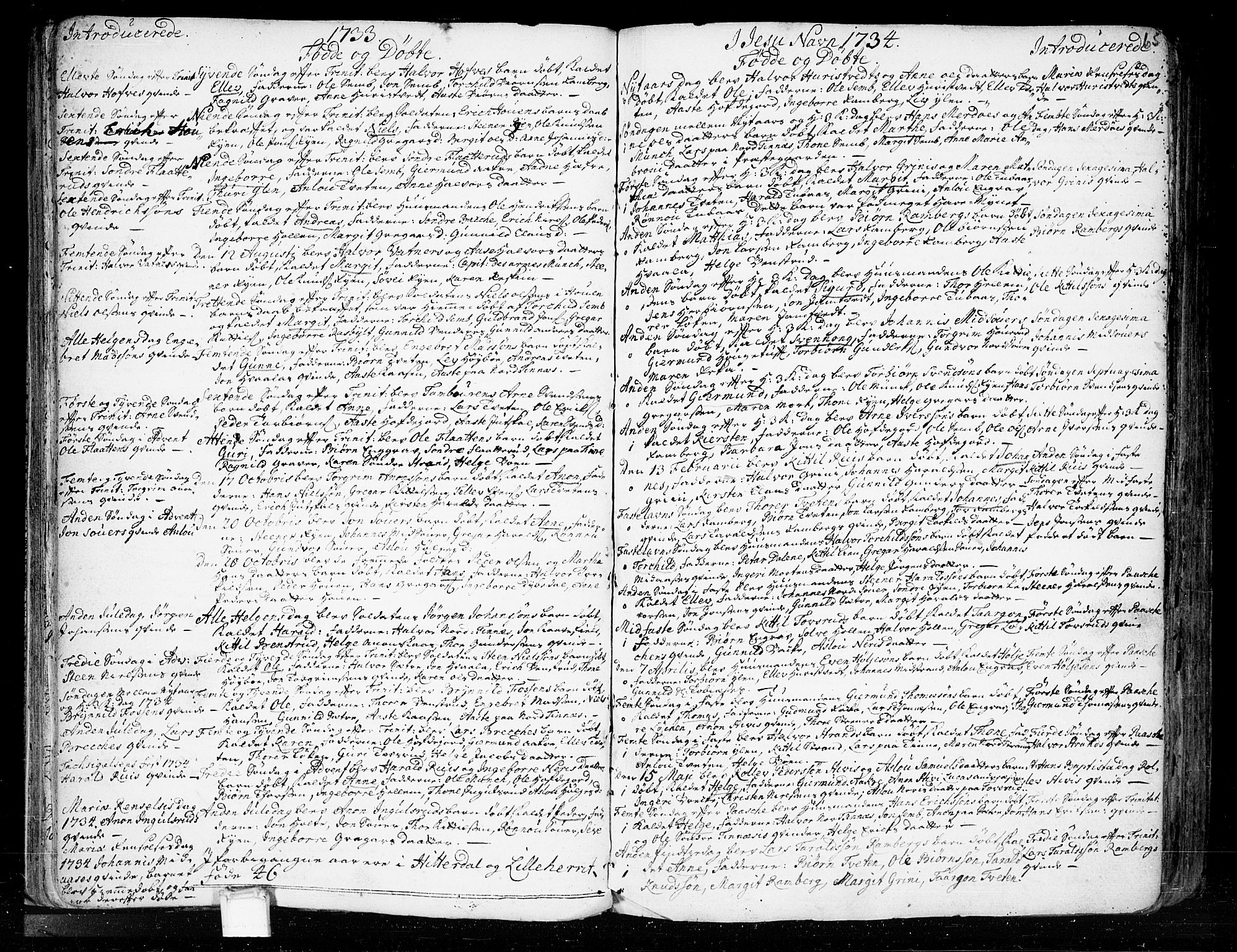 SAKO, Heddal kirkebøker, F/Fa/L0003: Ministerialbok nr. I 3, 1723-1783, s. 65