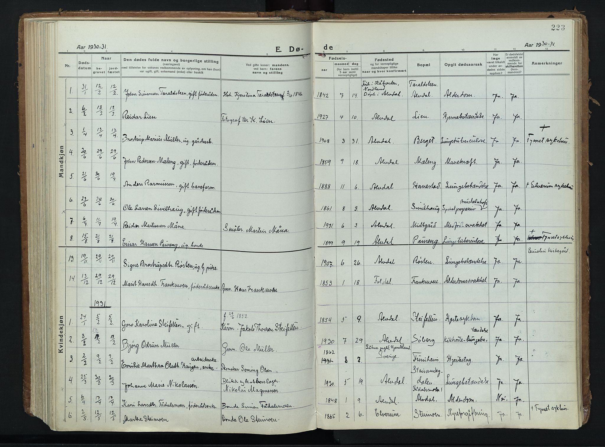 SAH, Alvdal prestekontor, Ministerialbok nr. 6, 1920-1937, s. 223