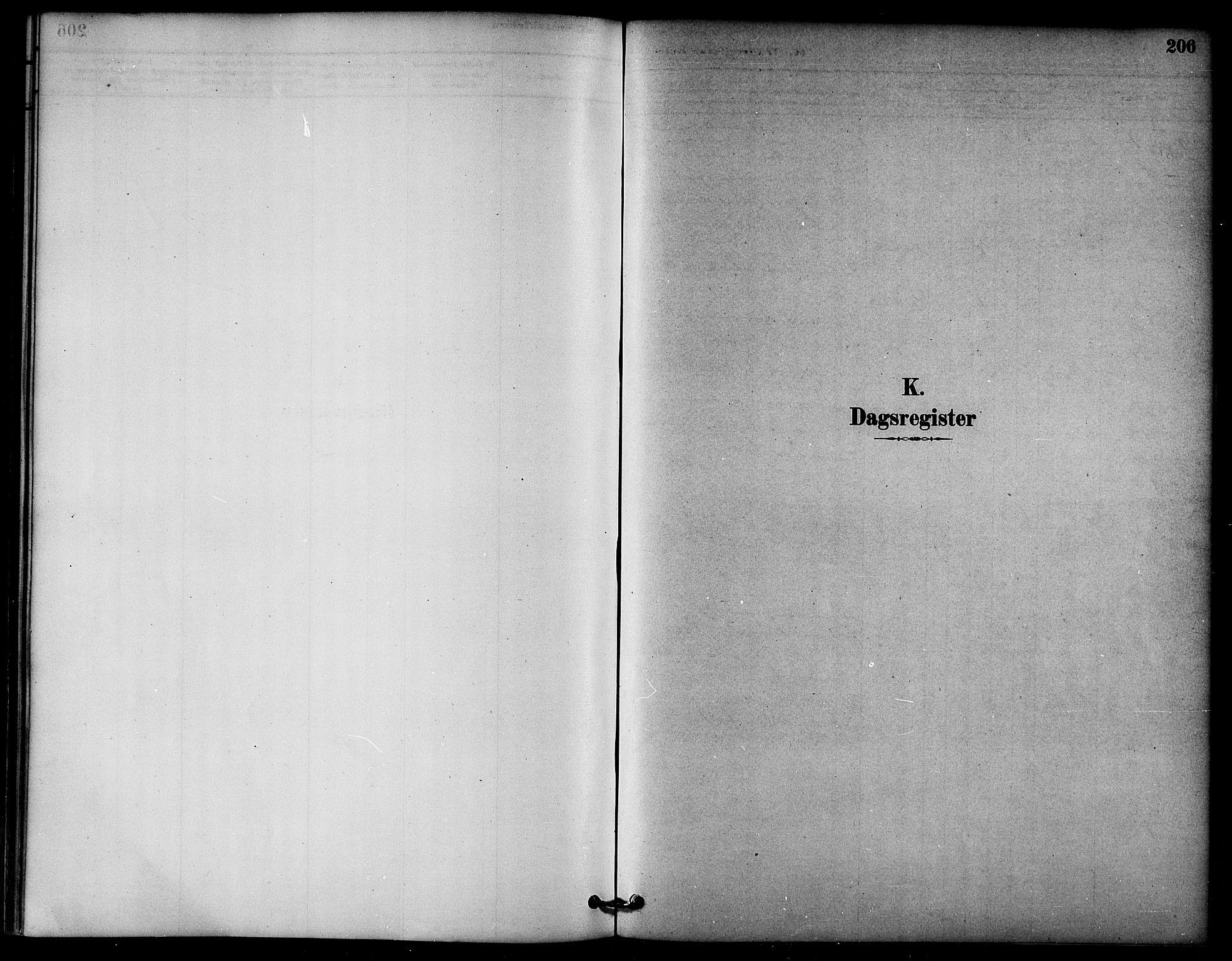 SAT, Ministerialprotokoller, klokkerbøker og fødselsregistre - Nord-Trøndelag, 764/L0555: Ministerialbok nr. 764A10, 1881-1896, s. 206