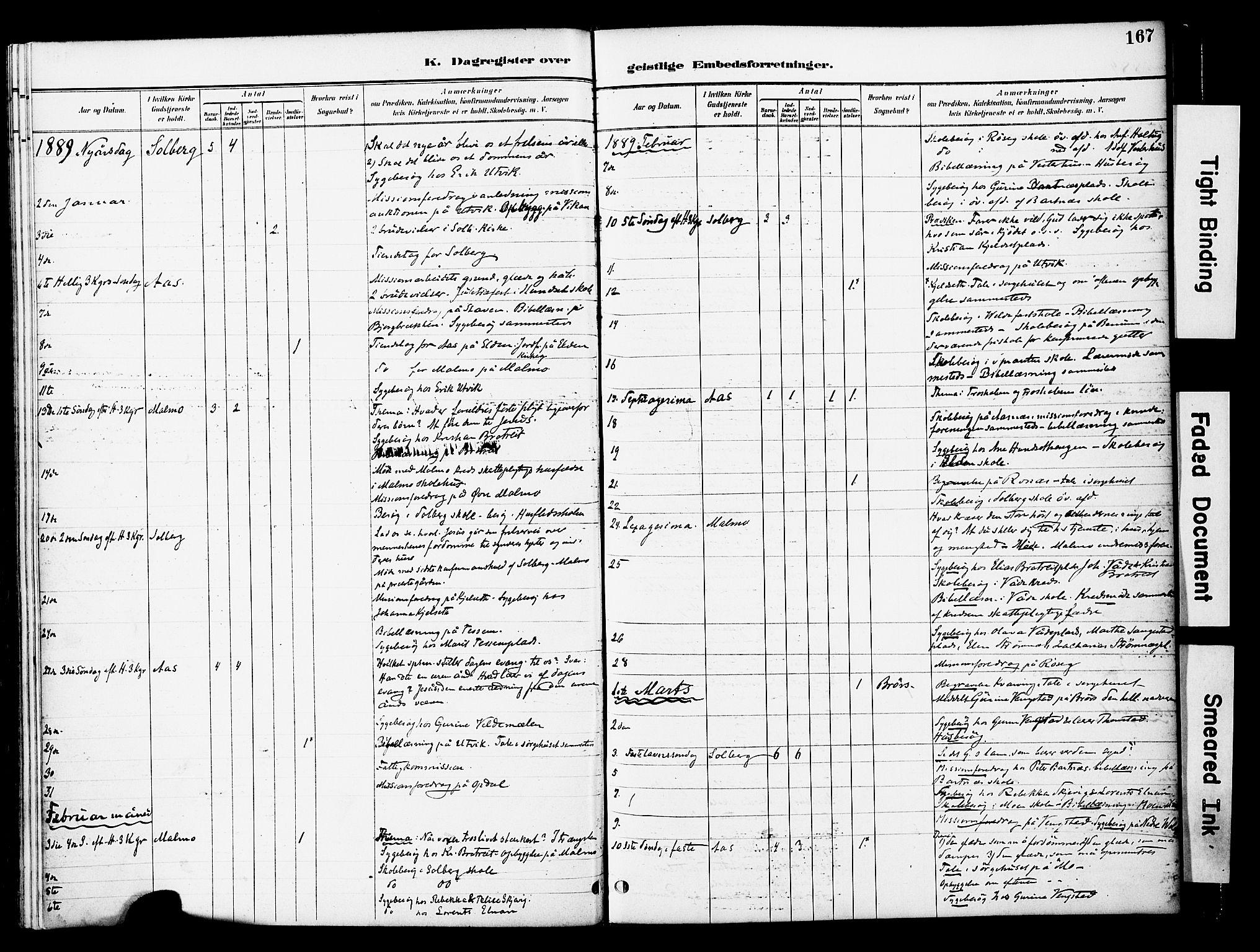 SAT, Ministerialprotokoller, klokkerbøker og fødselsregistre - Nord-Trøndelag, 741/L0396: Ministerialbok nr. 741A10, 1889-1901, s. 167