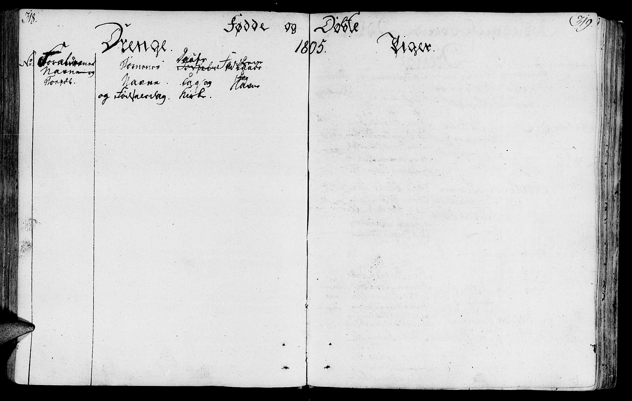 SAT, Ministerialprotokoller, klokkerbøker og fødselsregistre - Sør-Trøndelag, 646/L0606: Ministerialbok nr. 646A04, 1791-1805, s. 318-319