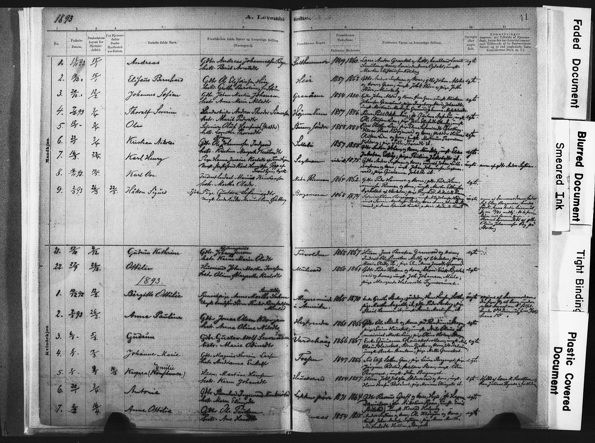 SAT, Ministerialprotokoller, klokkerbøker og fødselsregistre - Nord-Trøndelag, 721/L0207: Ministerialbok nr. 721A02, 1880-1911, s. 41