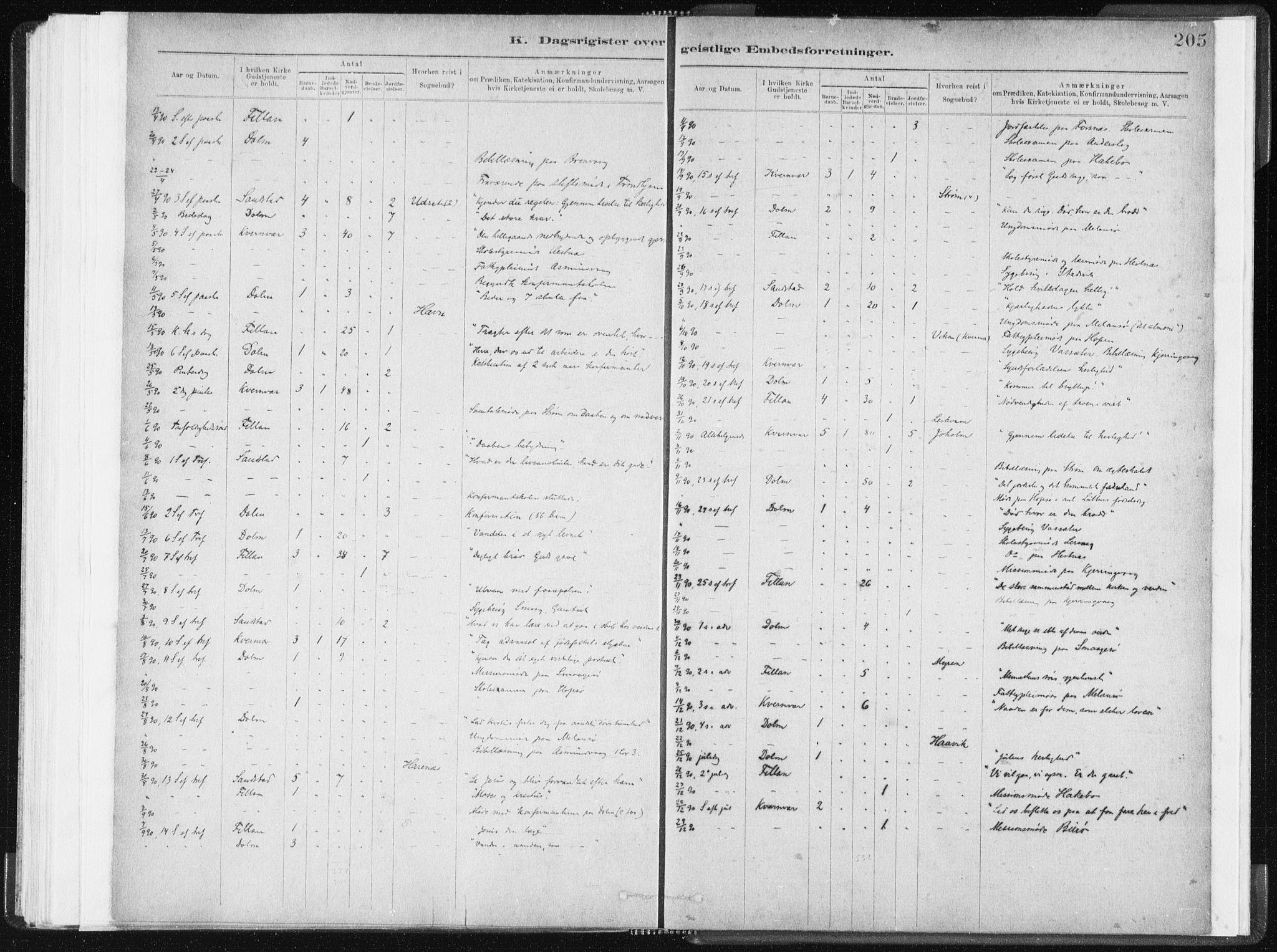 SAT, Ministerialprotokoller, klokkerbøker og fødselsregistre - Sør-Trøndelag, 634/L0533: Ministerialbok nr. 634A09, 1882-1901, s. 205