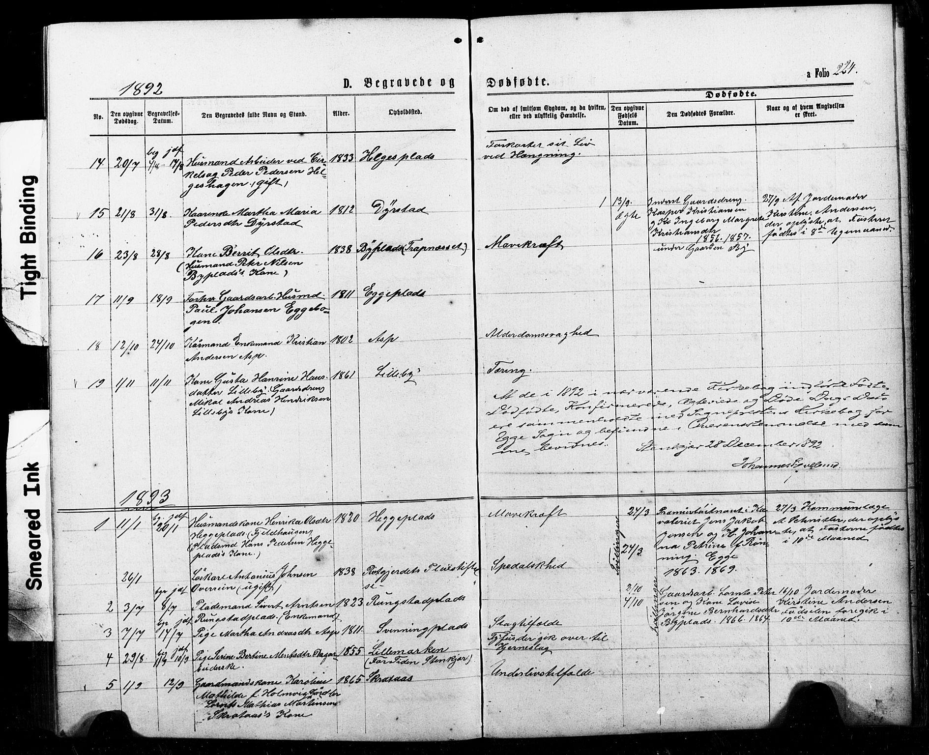 SAT, Ministerialprotokoller, klokkerbøker og fødselsregistre - Nord-Trøndelag, 740/L0380: Klokkerbok nr. 740C01, 1868-1902, s. 224