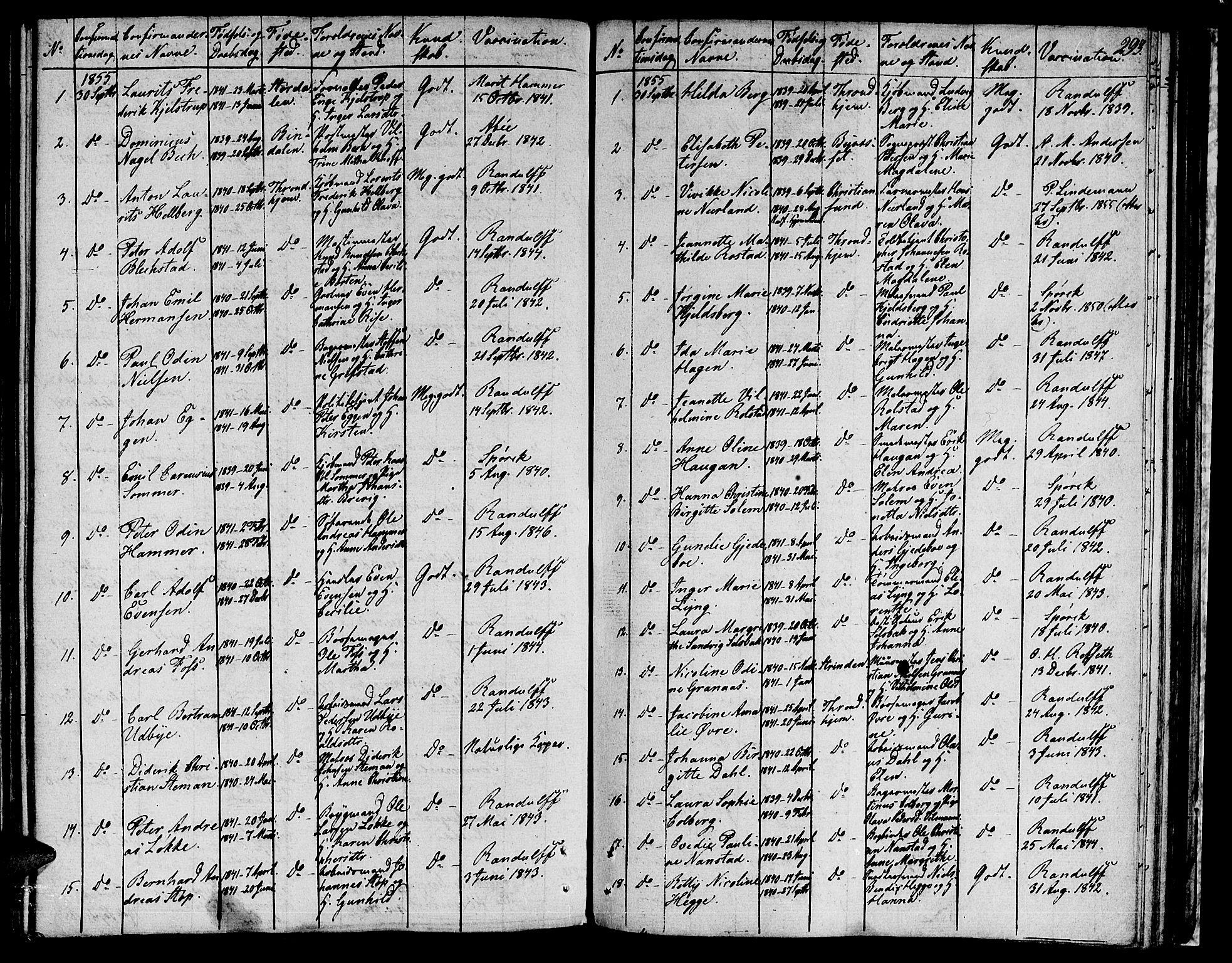 SAT, Ministerialprotokoller, klokkerbøker og fødselsregistre - Sør-Trøndelag, 601/L0070: Residerende kapellans bok nr. 601B03, 1821-1881, s. 293