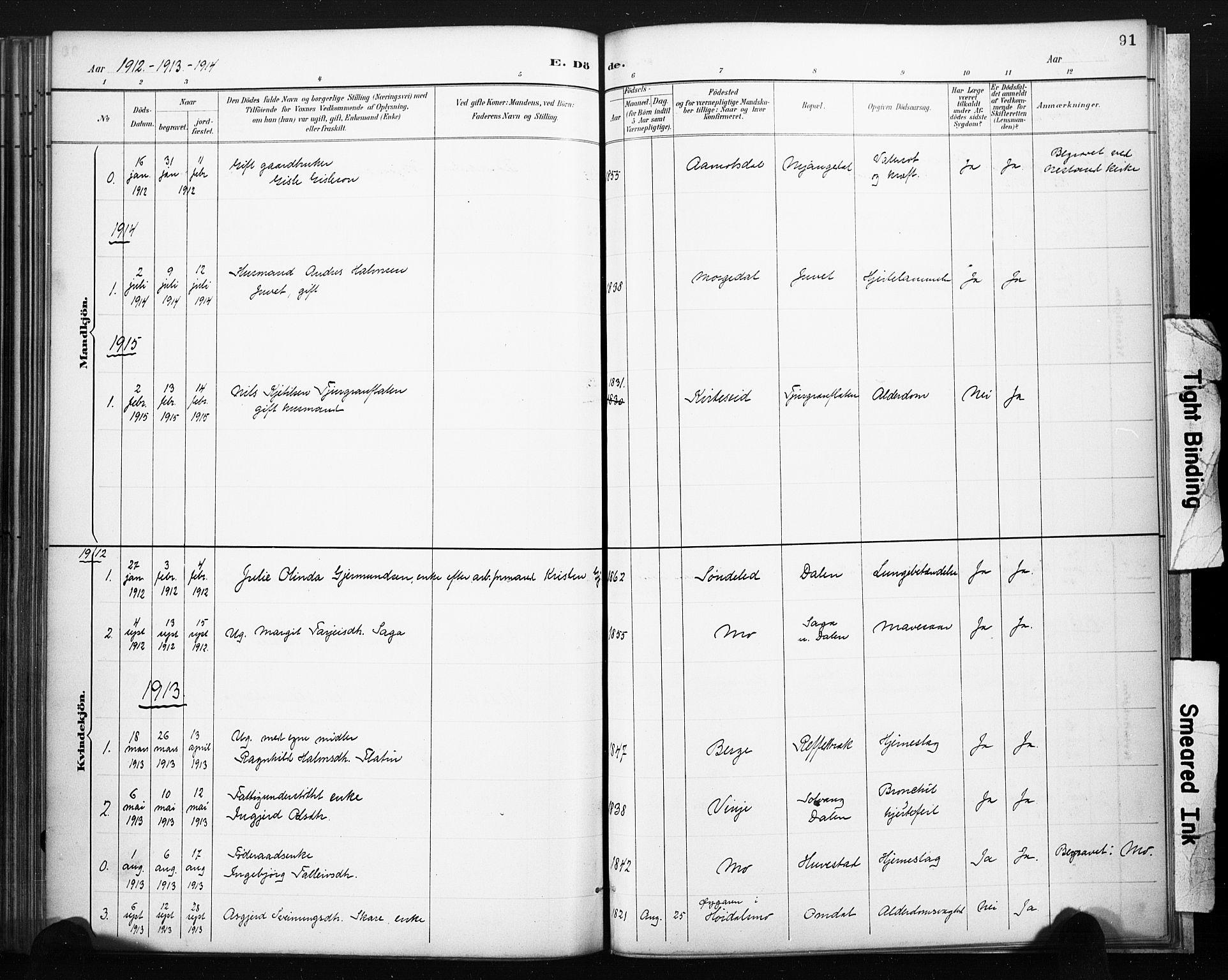SAKO, Lårdal kirkebøker, F/Fb/L0002: Ministerialbok nr. II 2, 1887-1918, s. 91