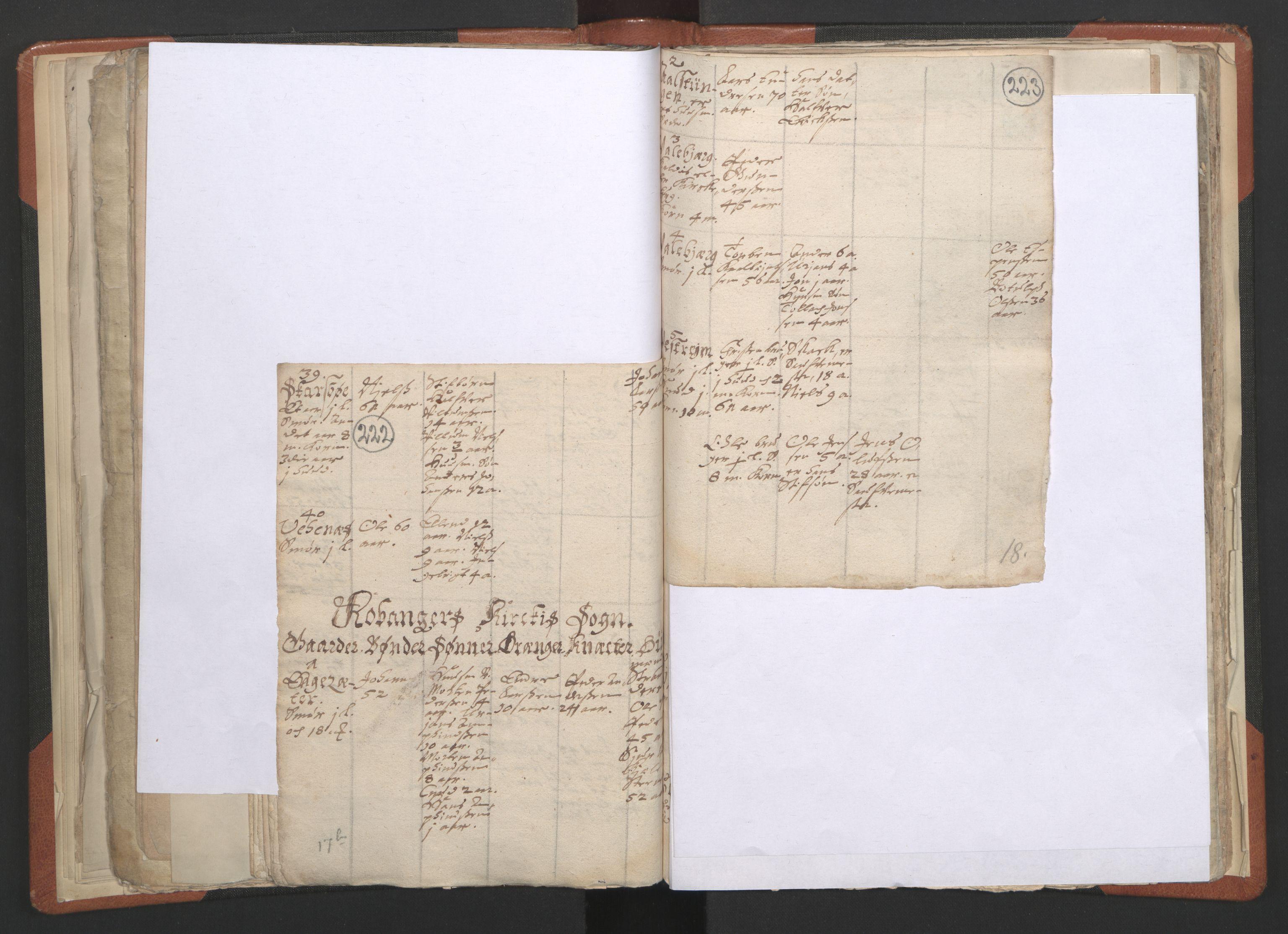 RA, Sogneprestenes manntall 1664-1666, nr. 23: Sogn prosti, 1664-1666, s. 222-223